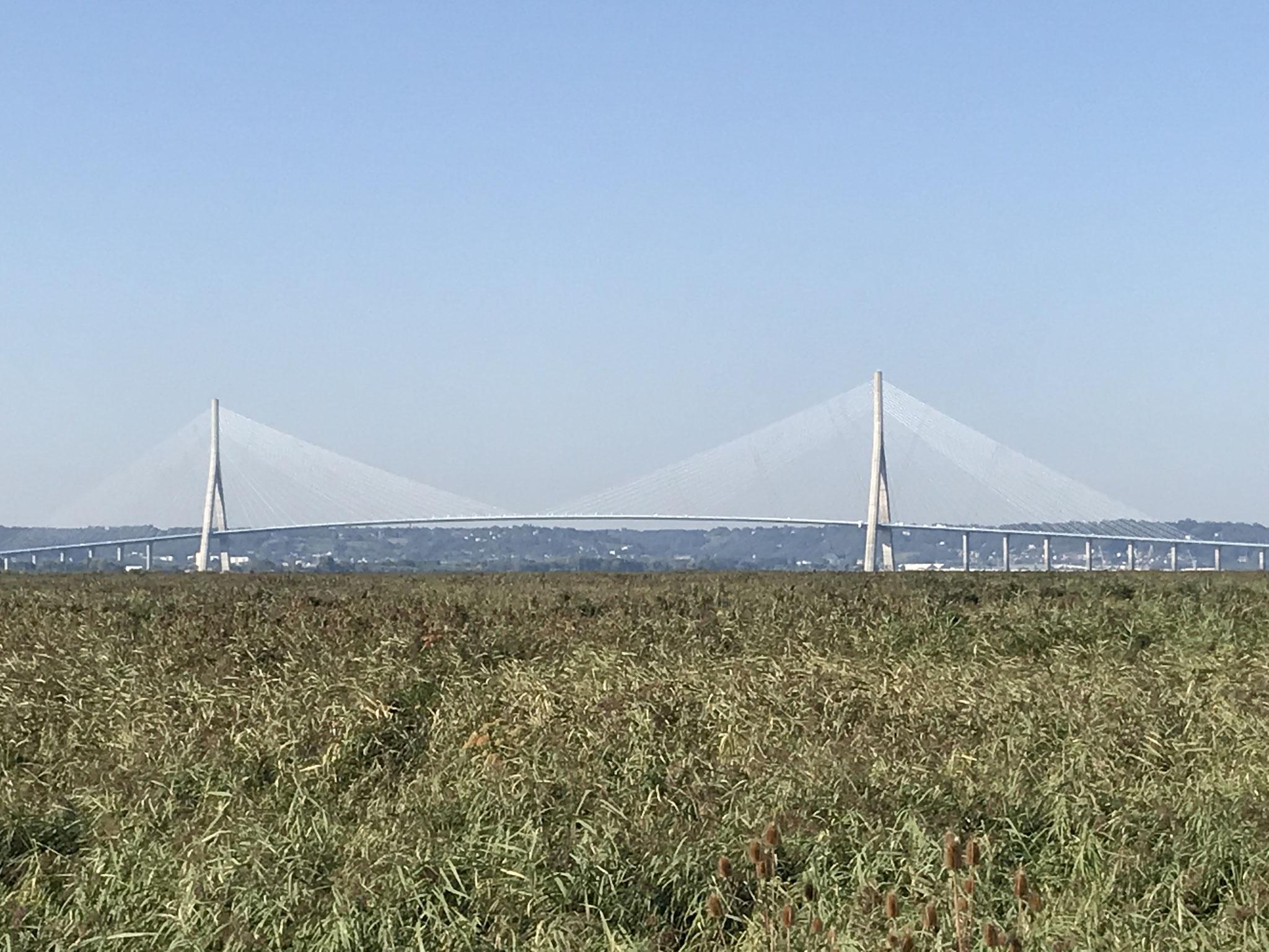 Pont de Normandie, die grösste Schrägseilbrücke Europas führt über die Seine