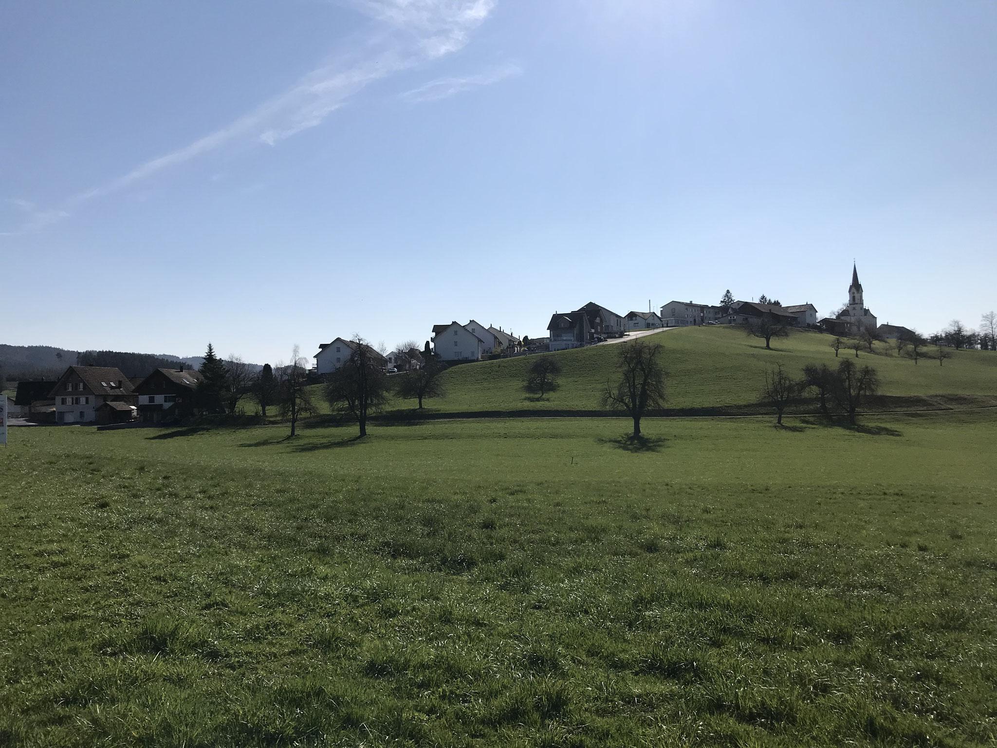 Dem Bodenseeradweg entlang nach Arbon(Strandbadrestaurant Buchhorn empfehlenswert), dann über Winden nach St. Pelagiberg