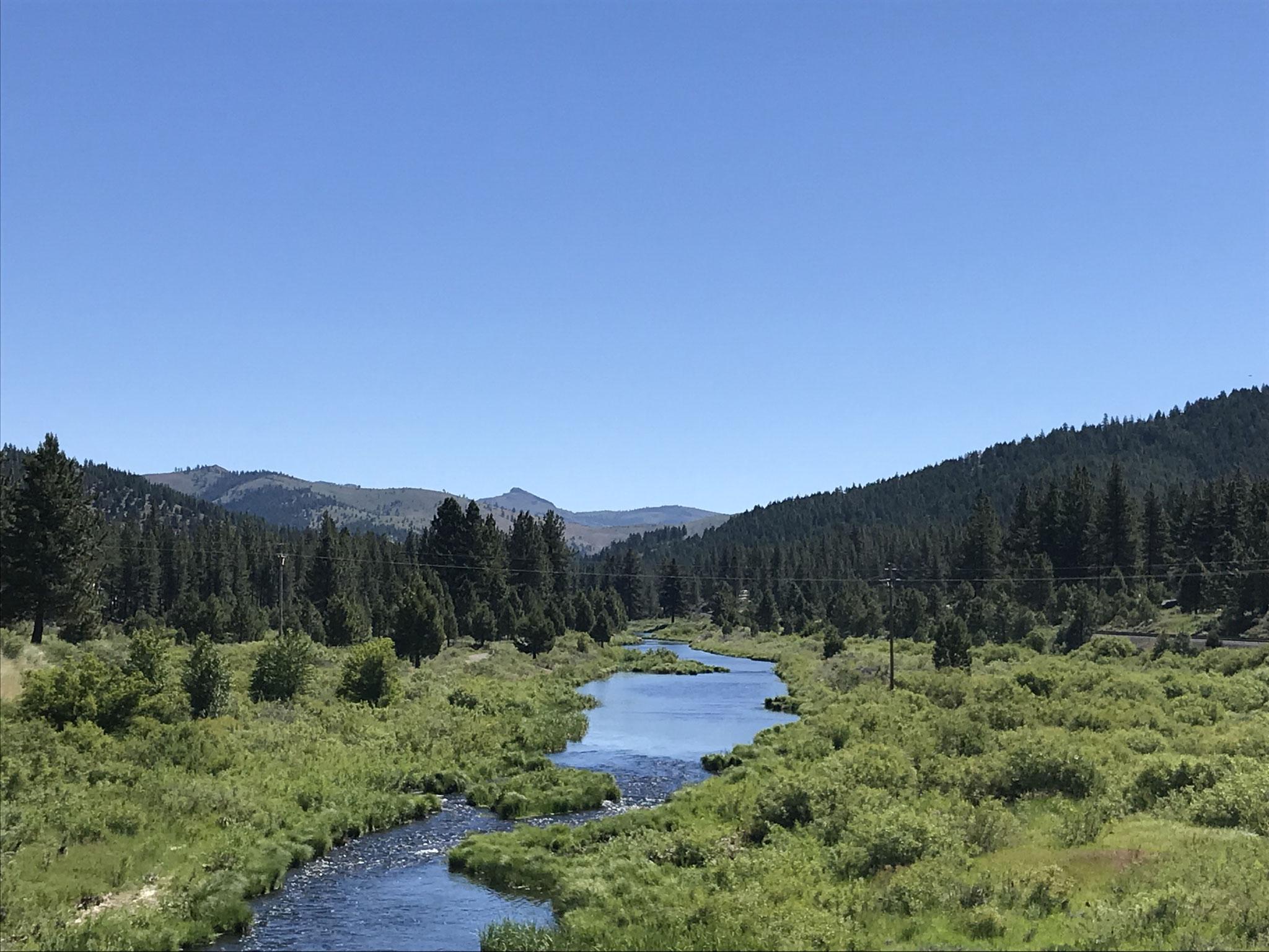 Blick in die schöne Landschaft des Plumas National Forest