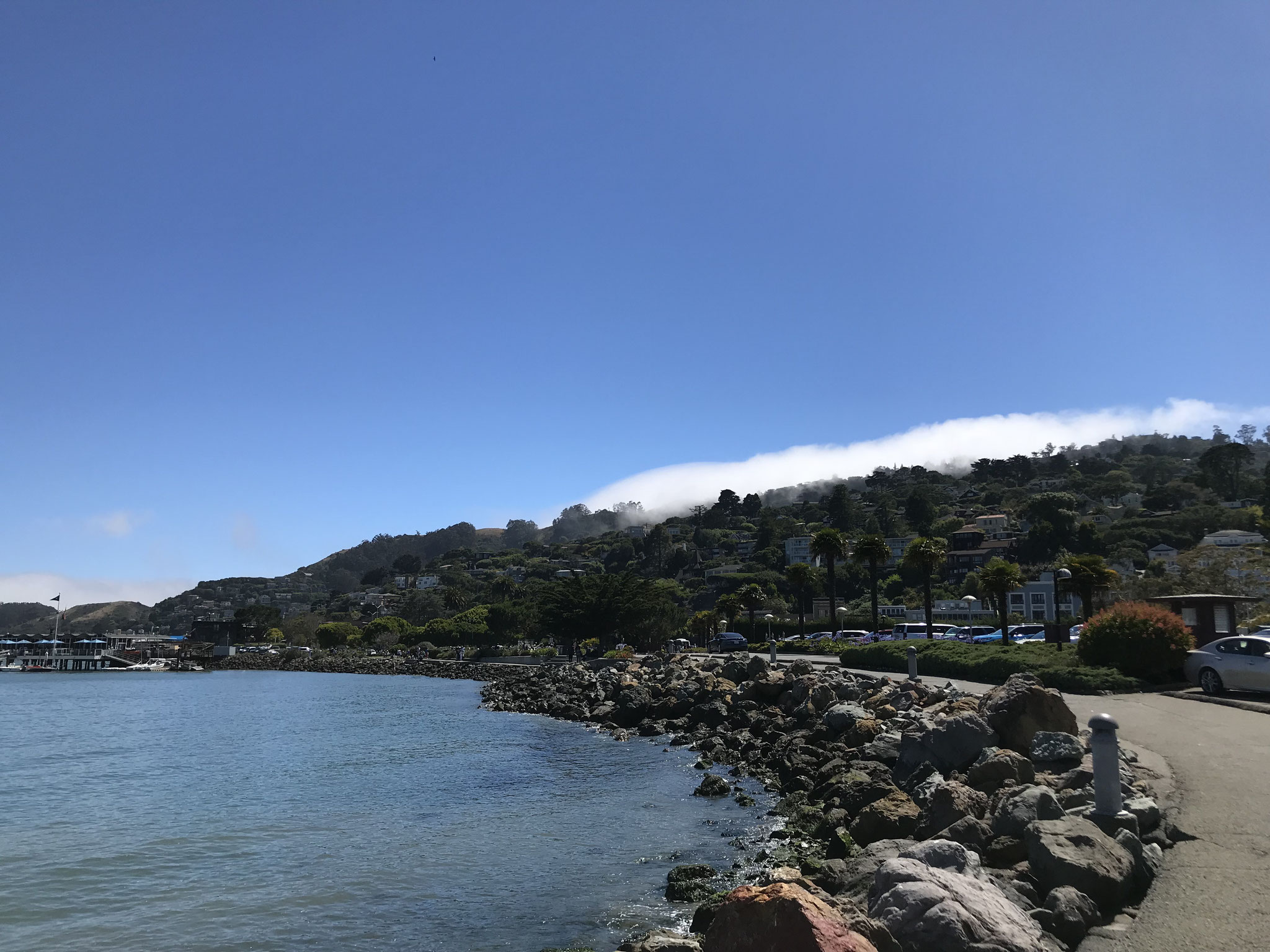 In Sausalito trafen wir auf tausende Touristen, die von SF her einen Tagesausflug machten.