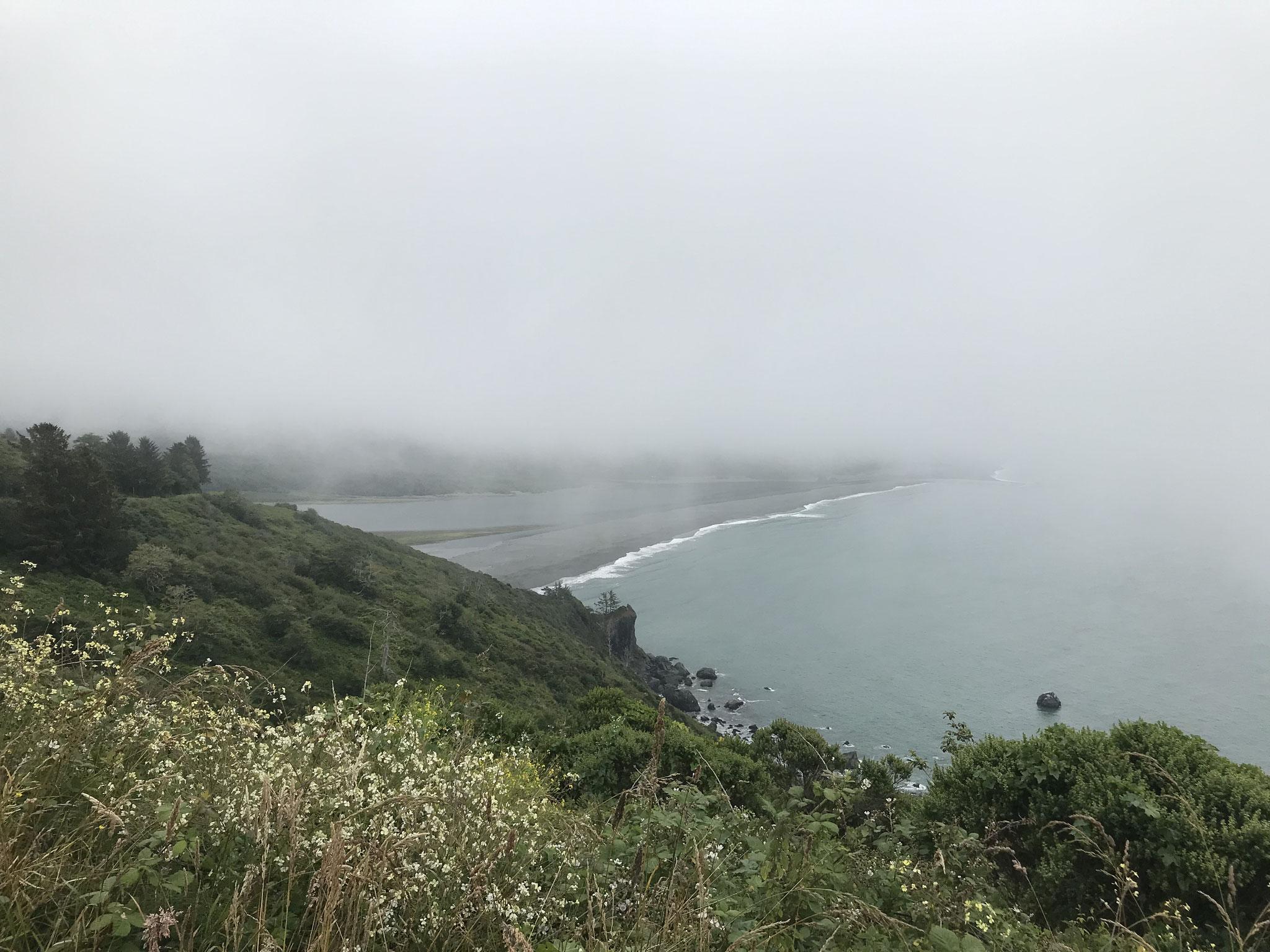 Am Morgen fuhren wir stets durch den Nebel und ...