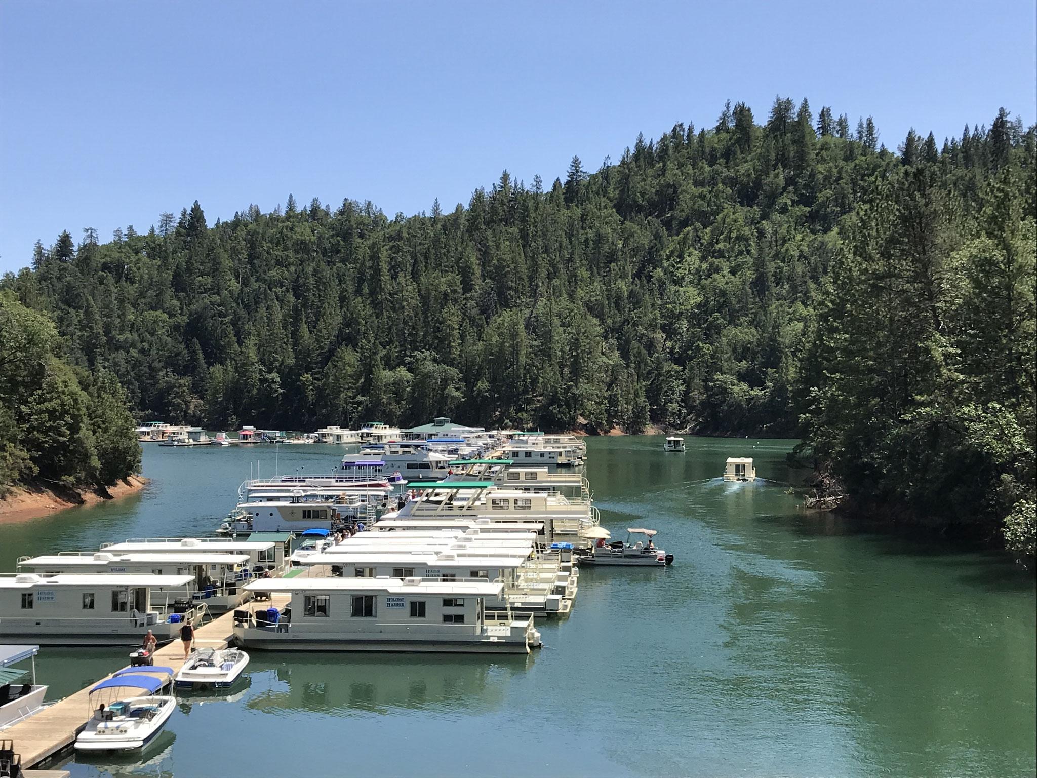 Auf dem Weg nach Dunsmuir kamen wir an einigen Stauseen vorbei, unter anderem am sehr grossen und viel verzweigten Shasta Lake, wo man auf Hausbooten Ferien machen kann.