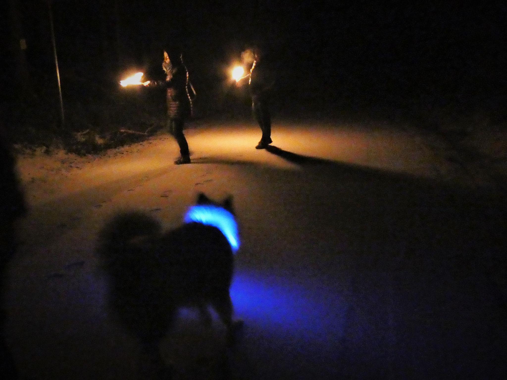 ...das blaue Leuchtband...
