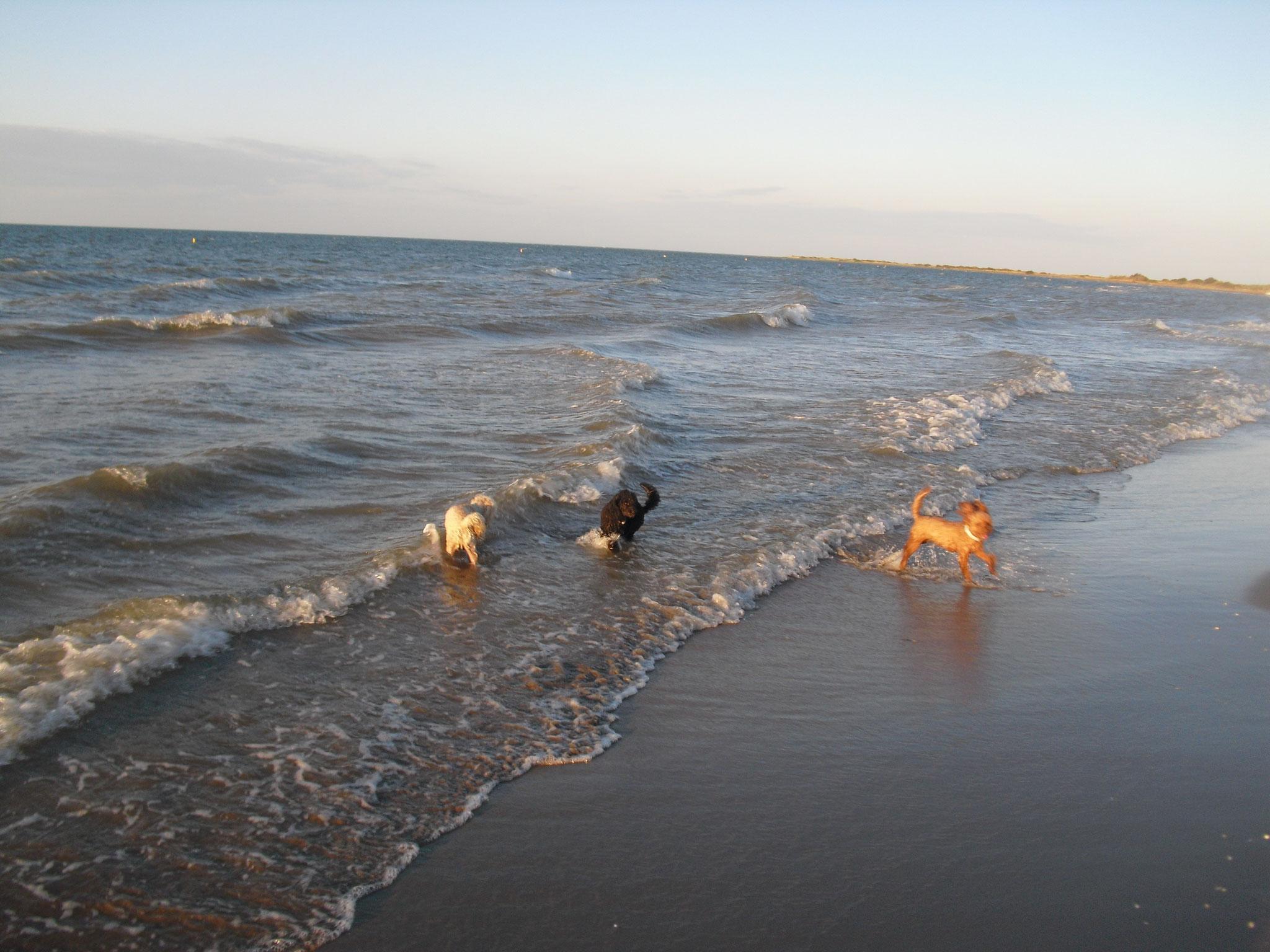 Spanien! Sie liebte das Meer.