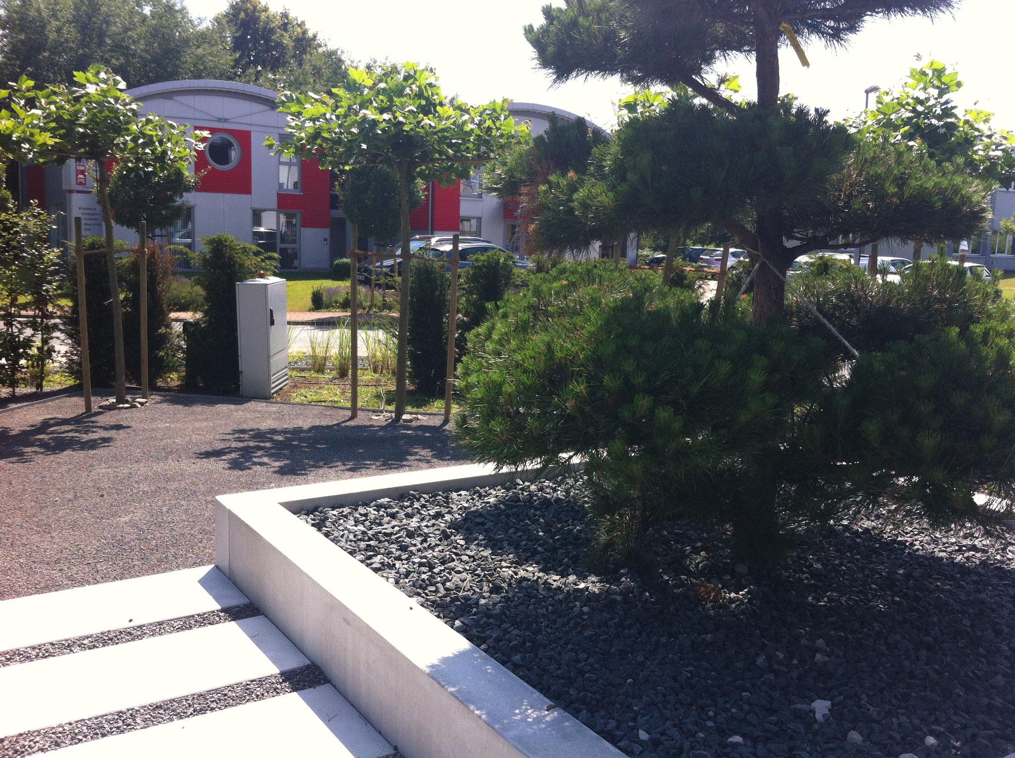 Gewerblicher Garten 8