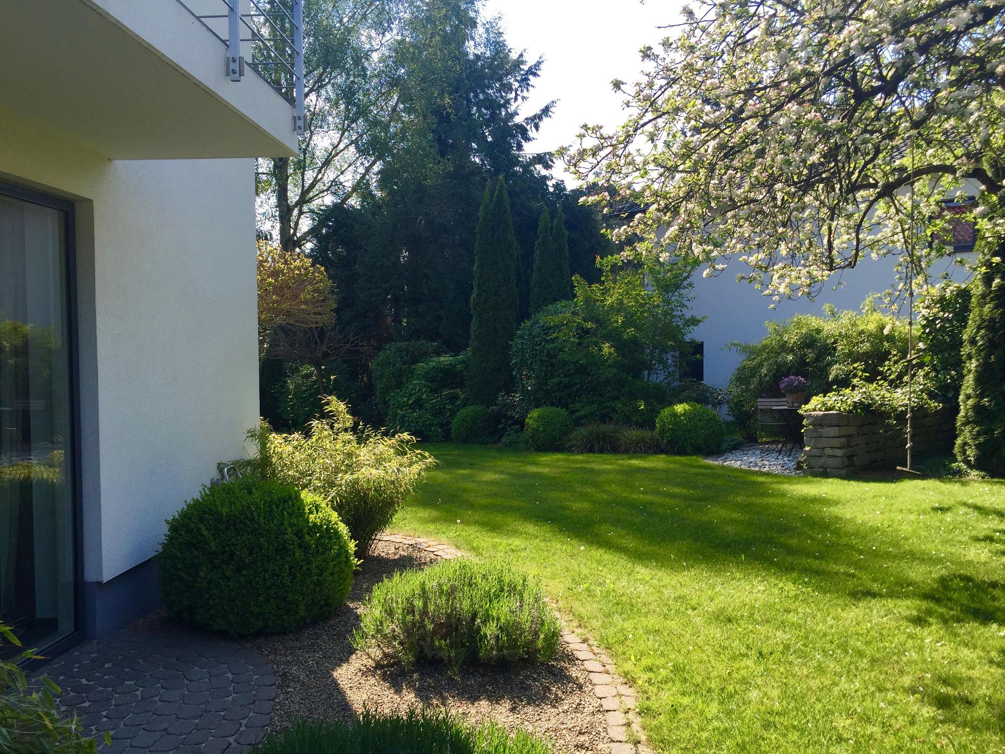 Einfamilienhausgarten 19