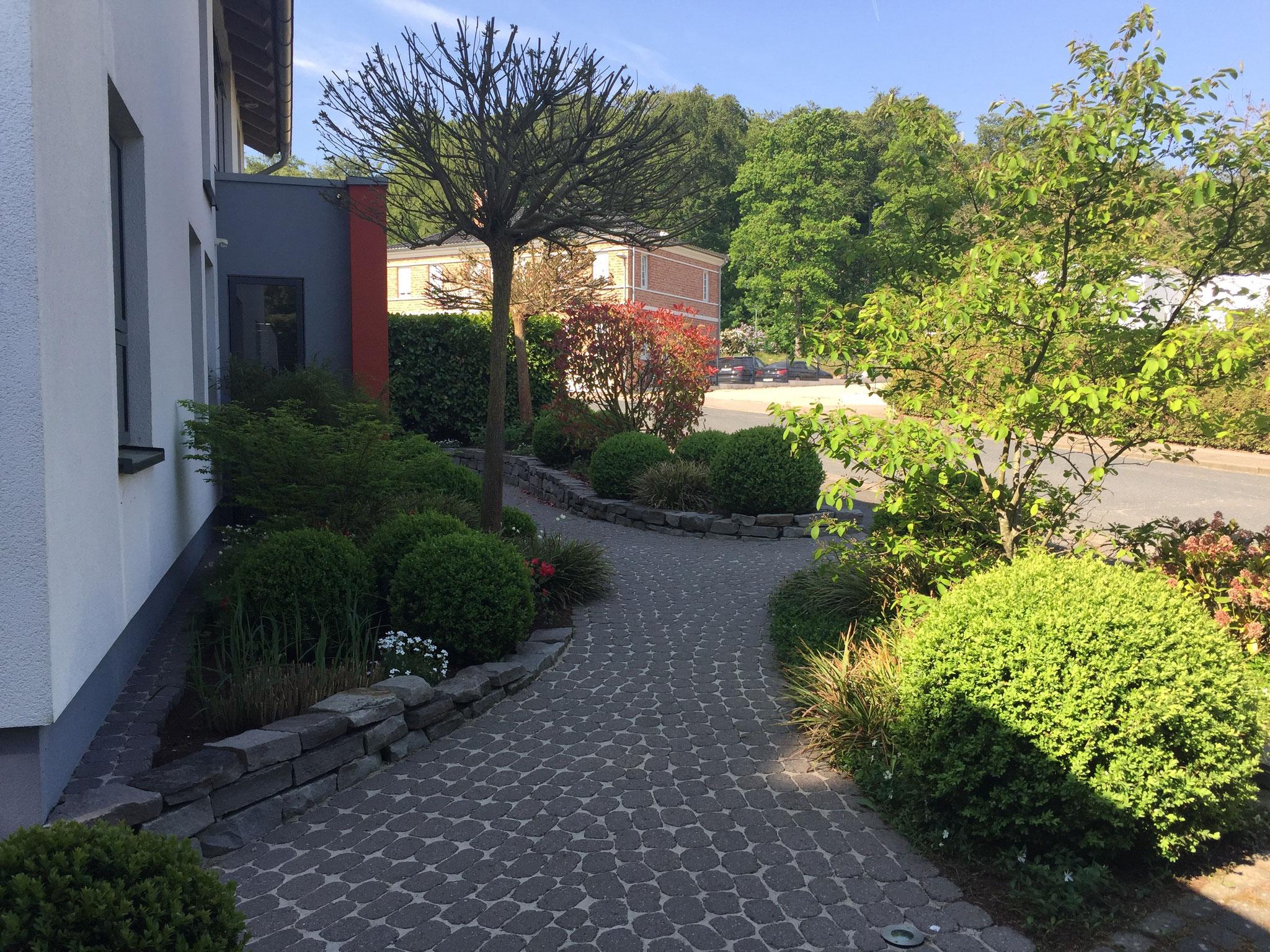 Vorgarten 3