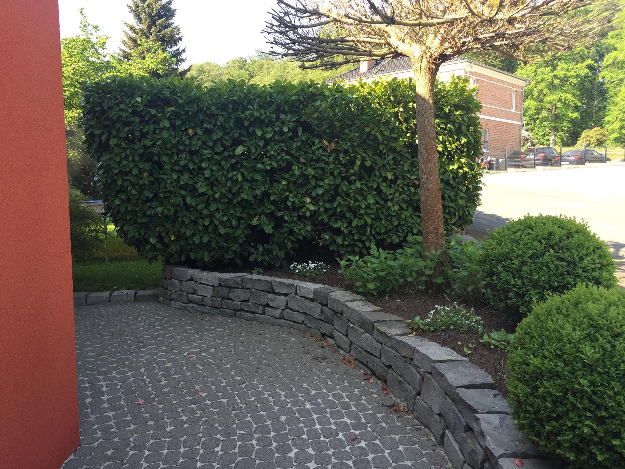 Gartenmauer 10