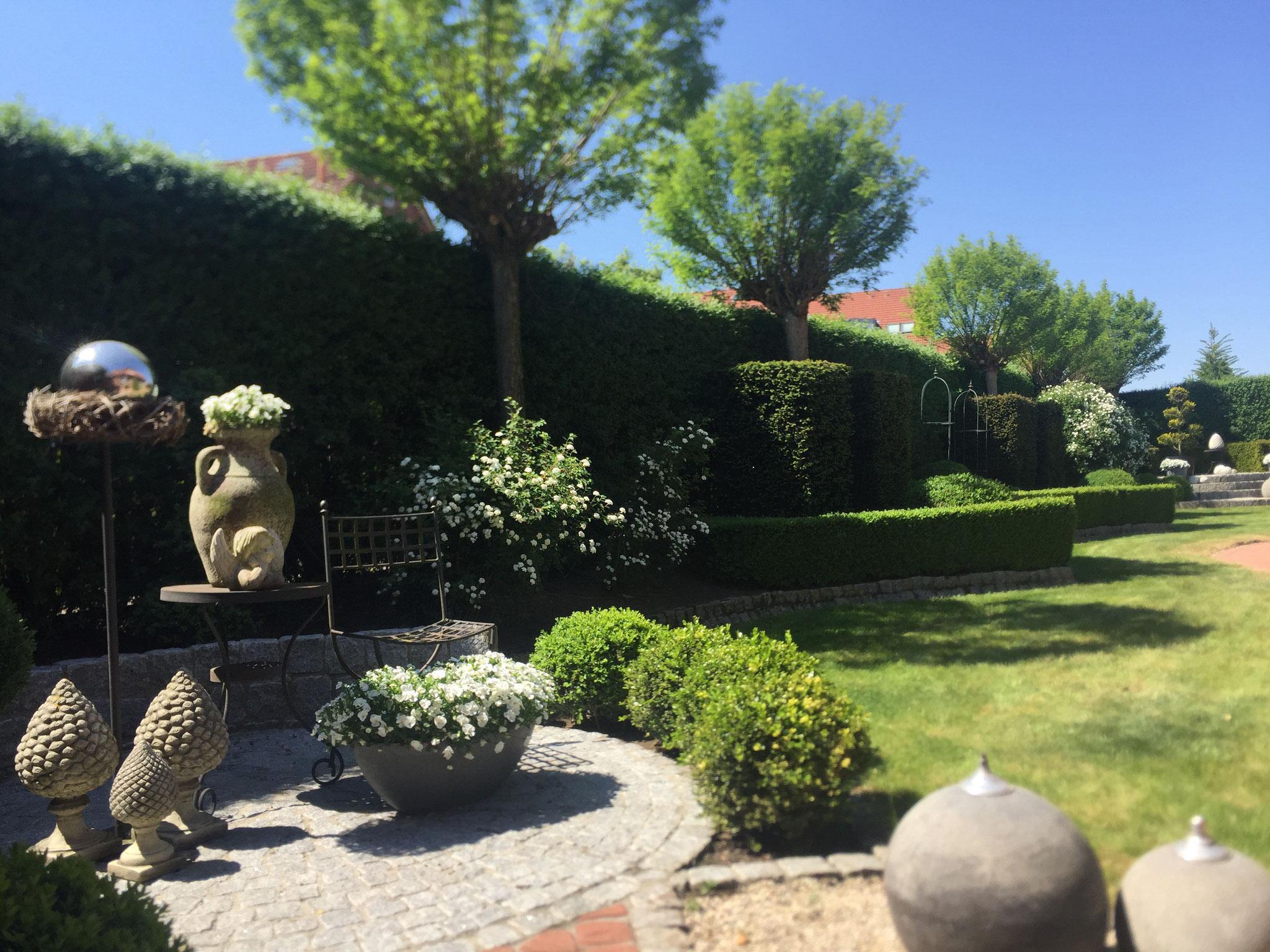 Einfamilienhausgarten 37