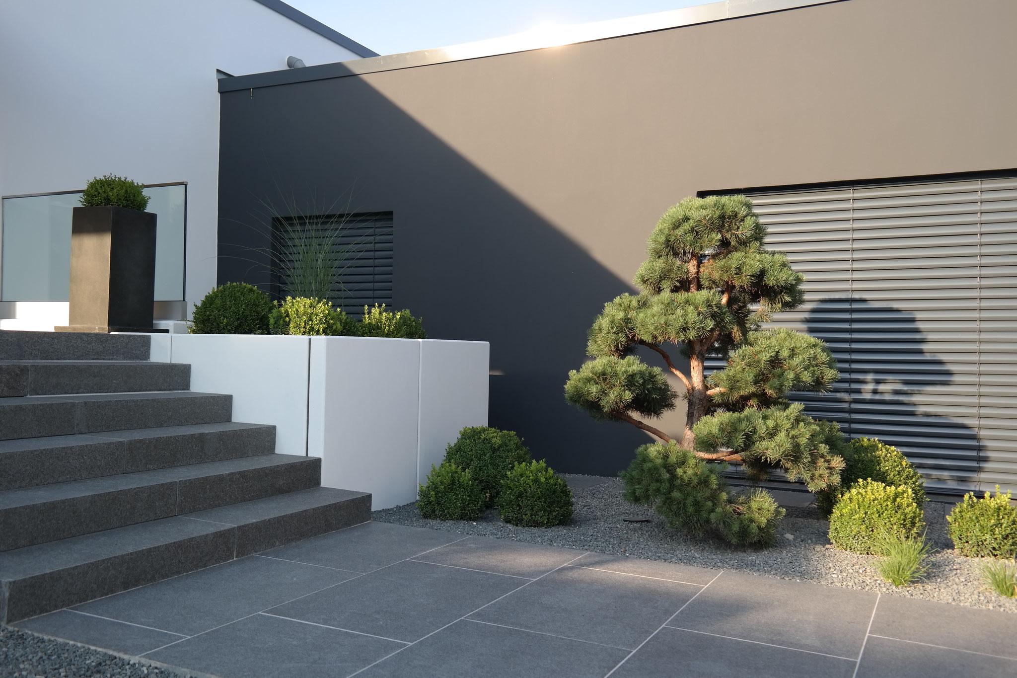 Garten modern 5