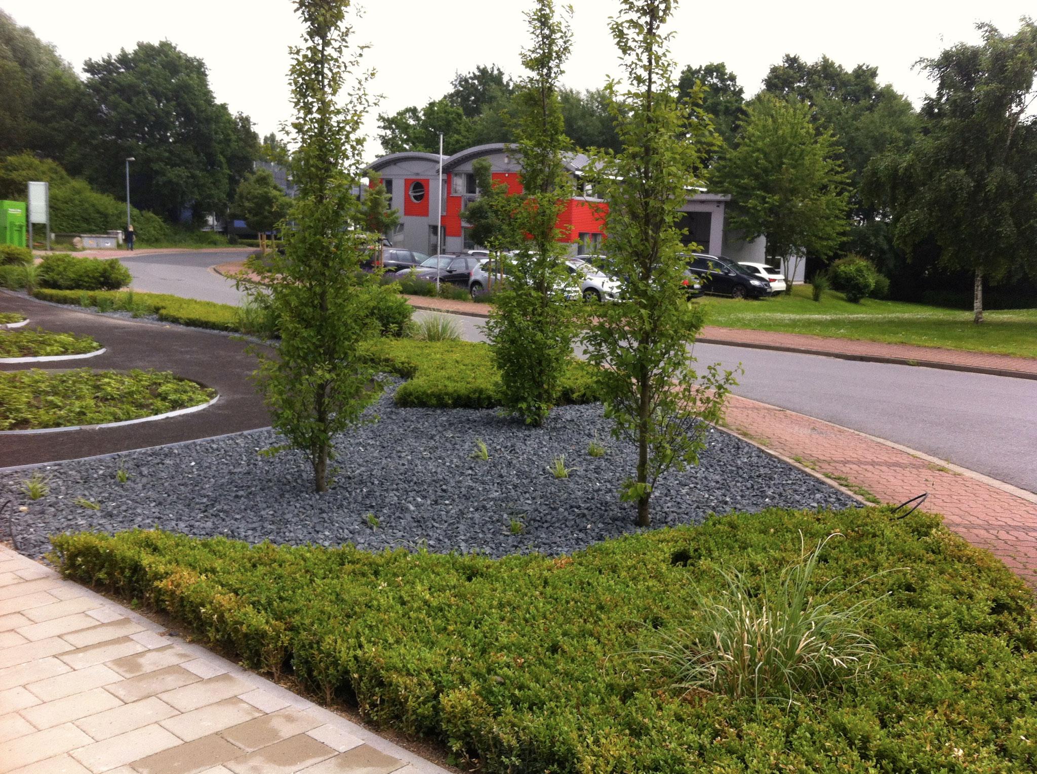 Gewerblicher Garten 7