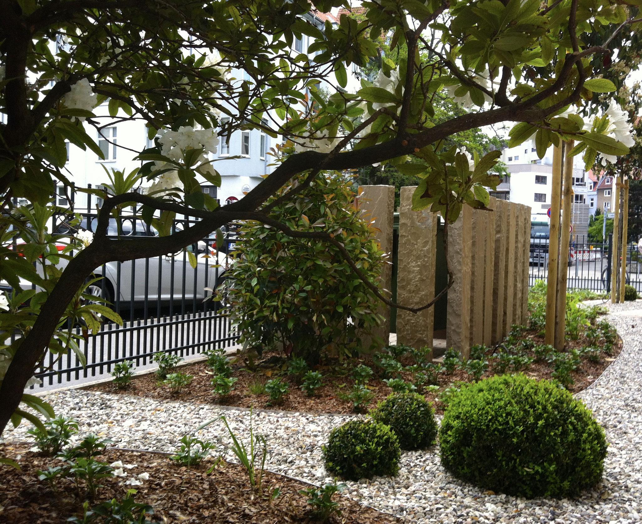 Mehrfamilienhausgarten 1