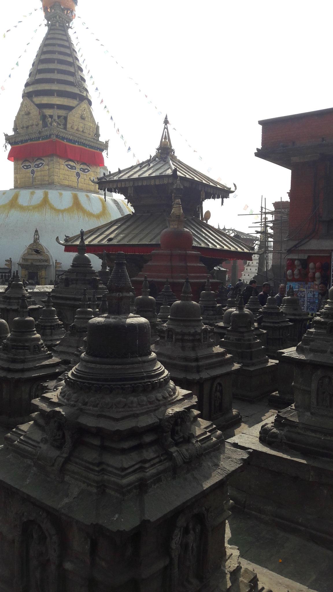 Monky Tempel