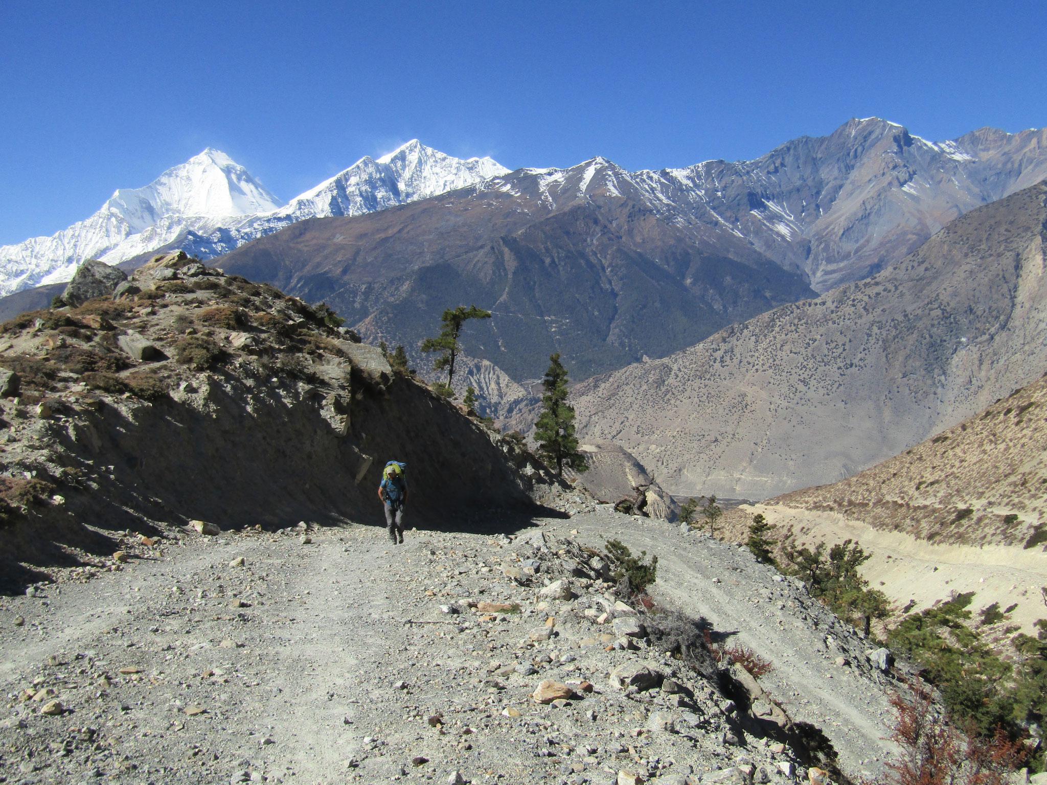 Auf dem Tilicho Trail