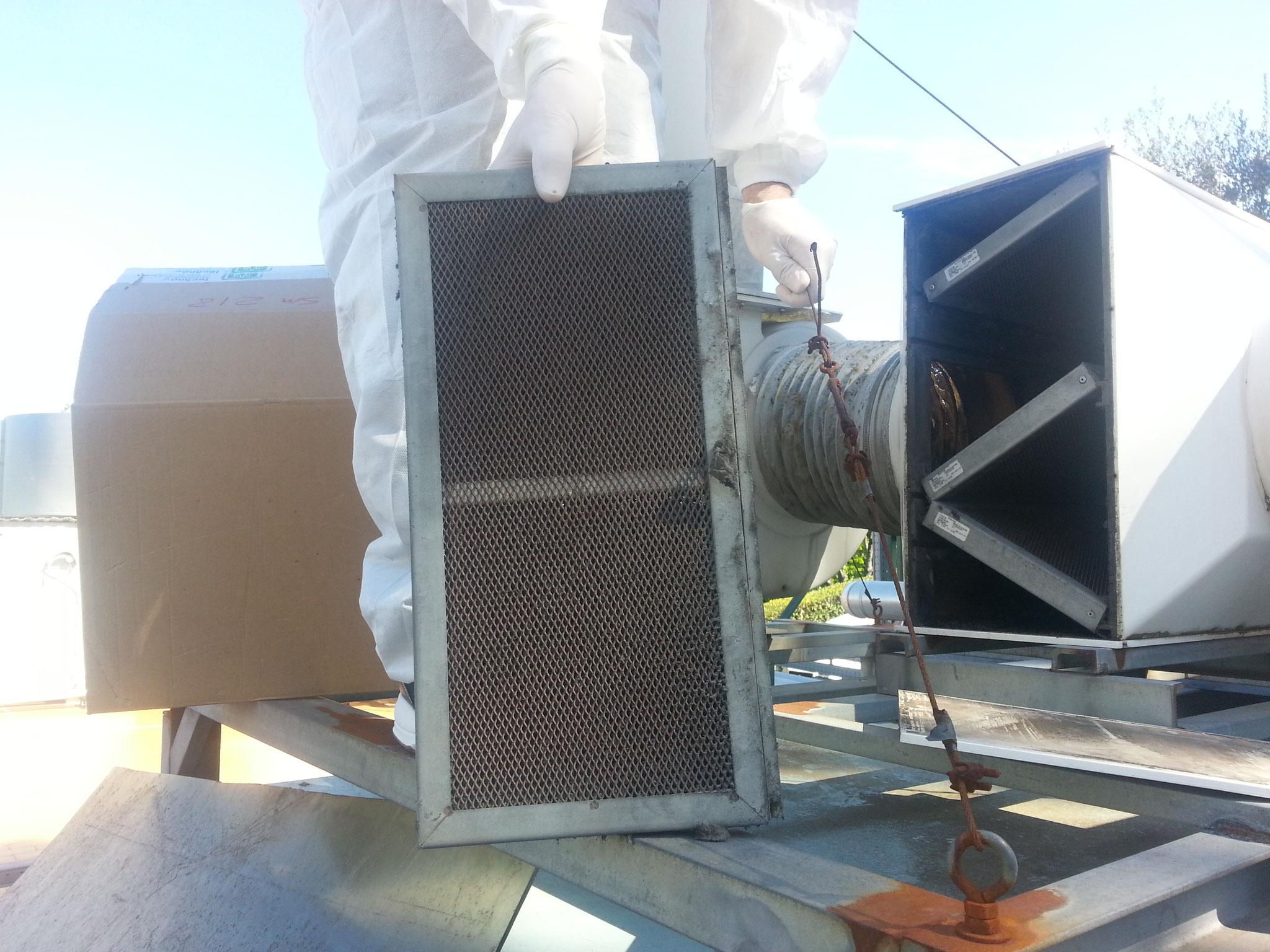 Carbone attivo in box filtri