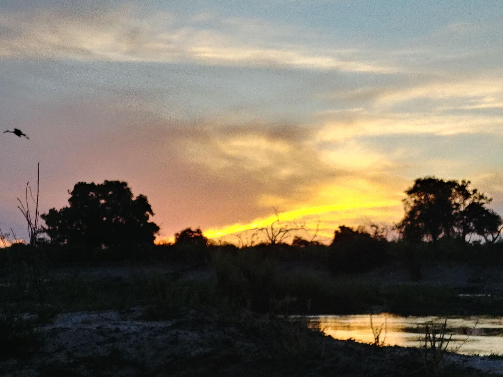 Sonnenuntergang auf einer Insel im Sambezi