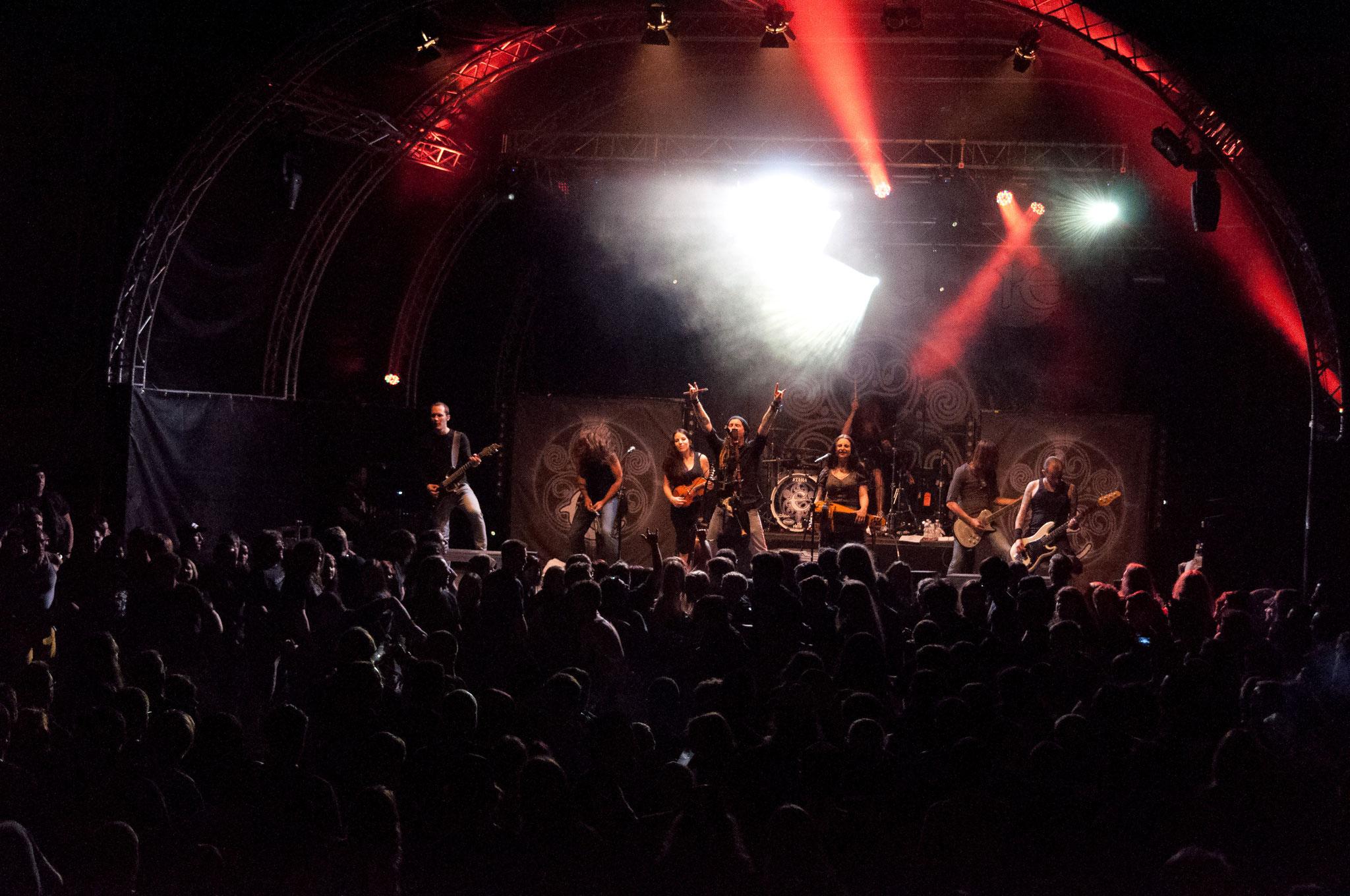 Eluveitie, 2013