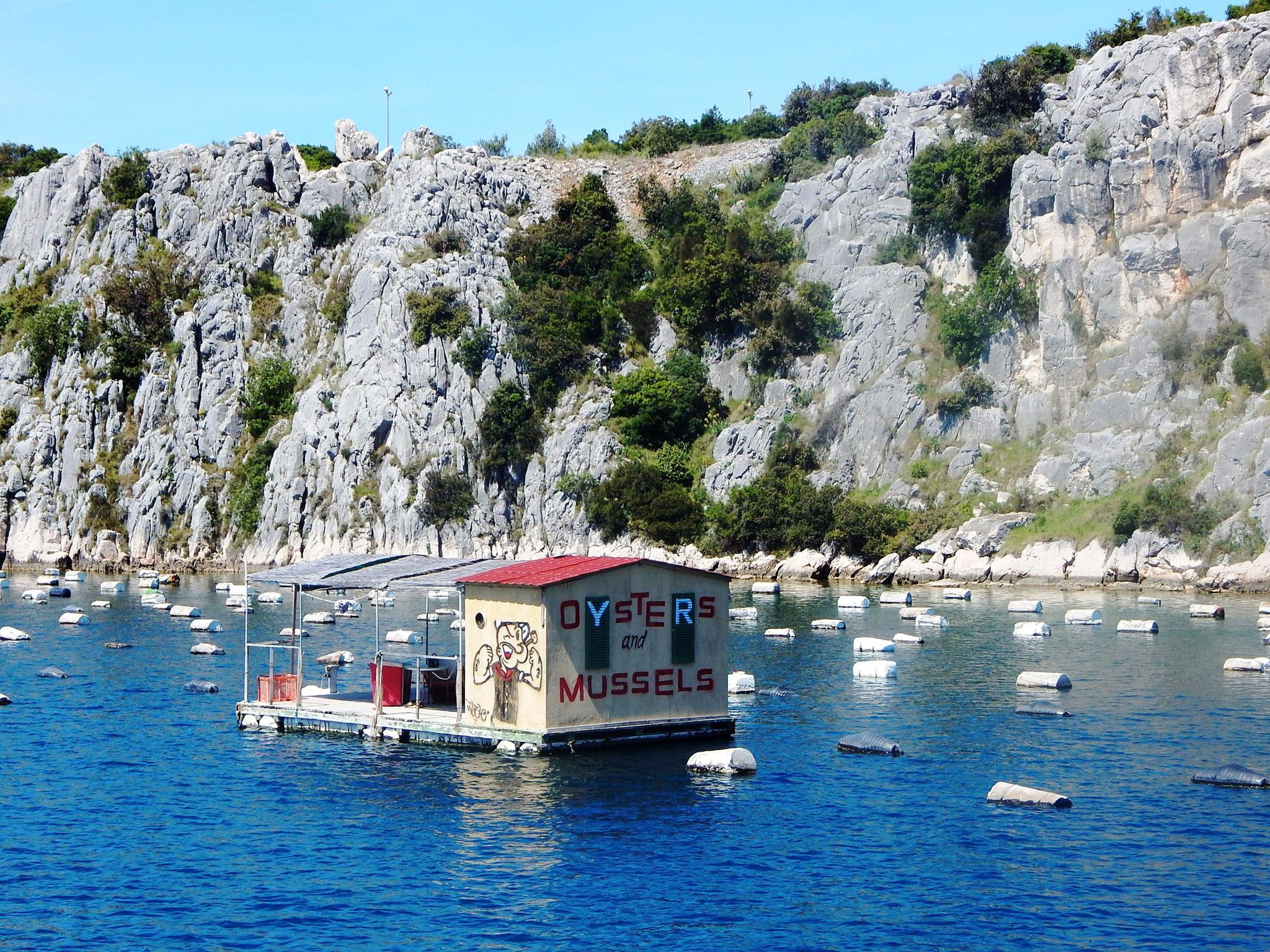 Muschel- und Austernverkauf auf dem Fluss
