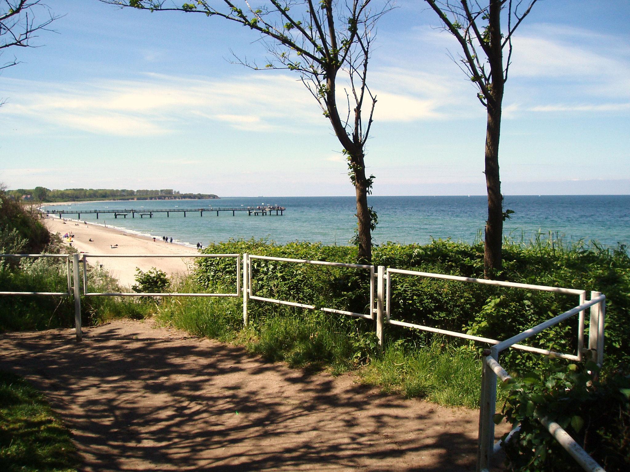 Blick vom Küstenwäldchen auf der Steilküste auf Strand und Seebrücke