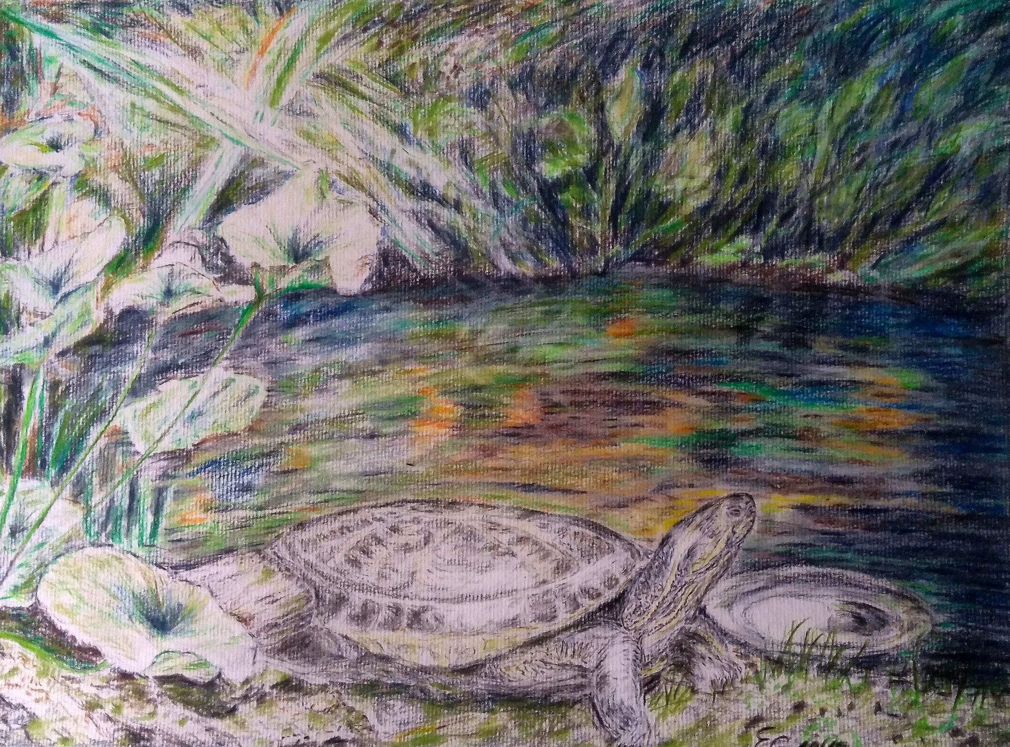 Ausflug, mit Rahmen 40 cm x 50 cm, Farbstift auf Papier