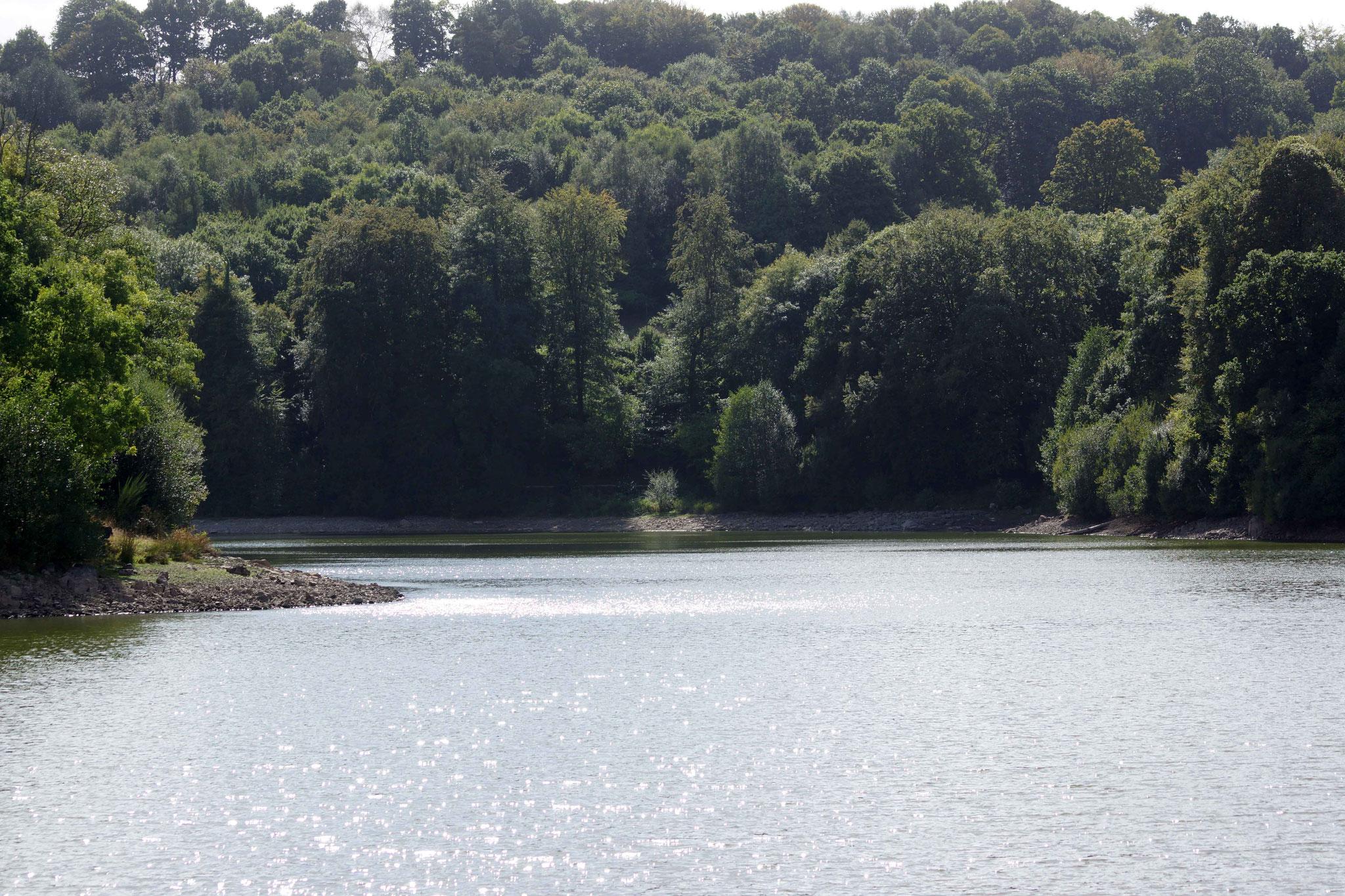 Lac de Bosméléac 14
