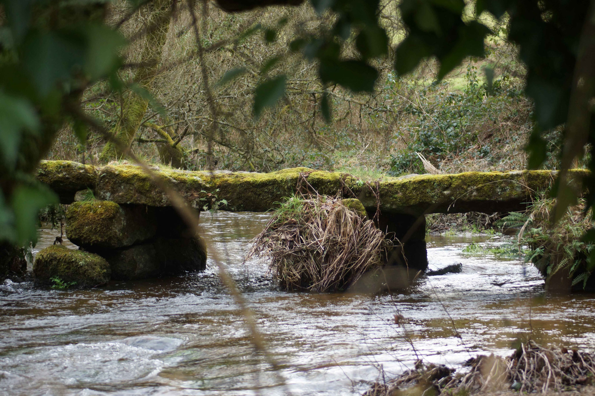 Pont Ar Forest depuis les rives du Douron à Plouegat Guerrand