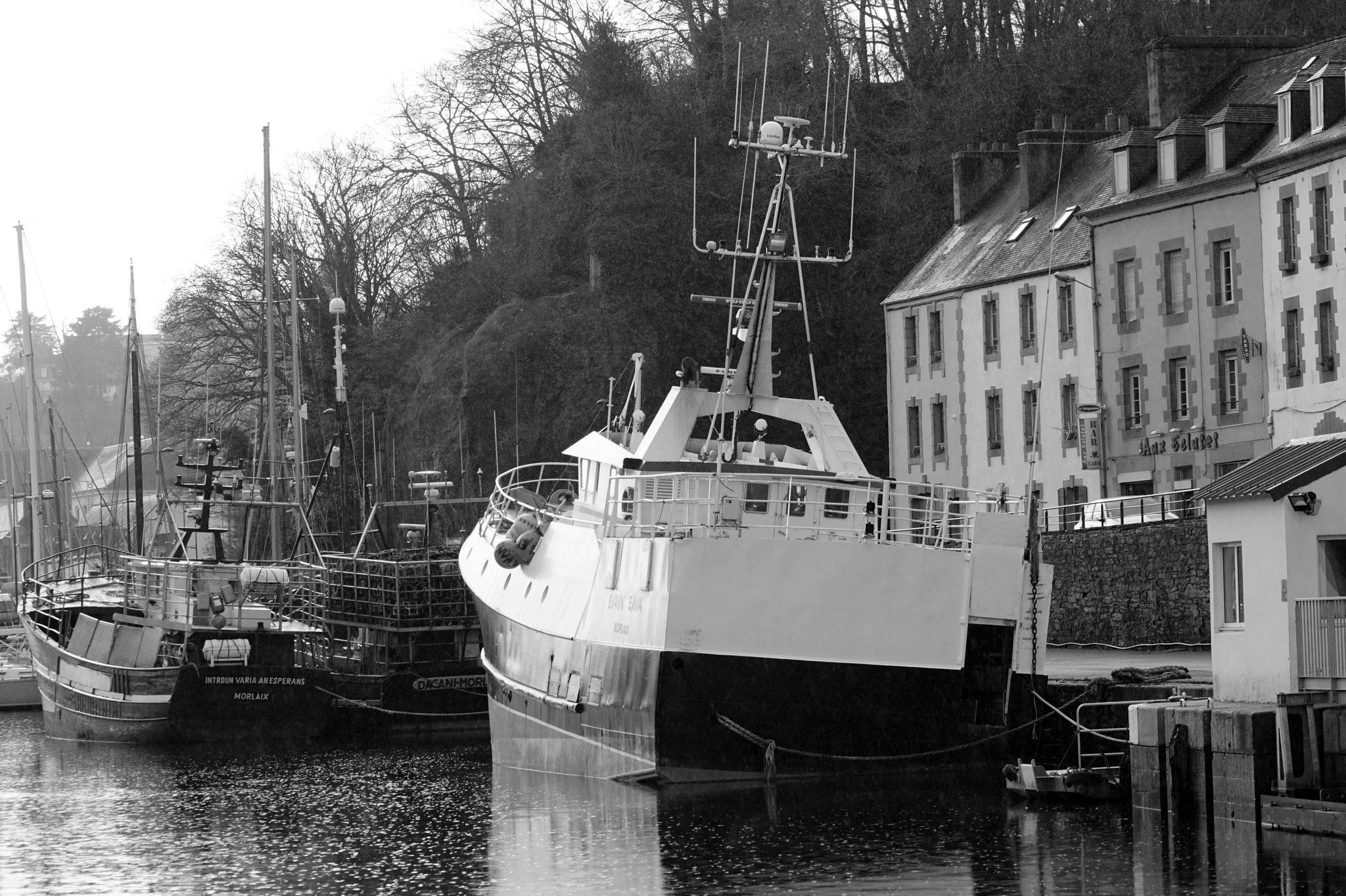 Le Port de pêche de Morlaix, DSC04522