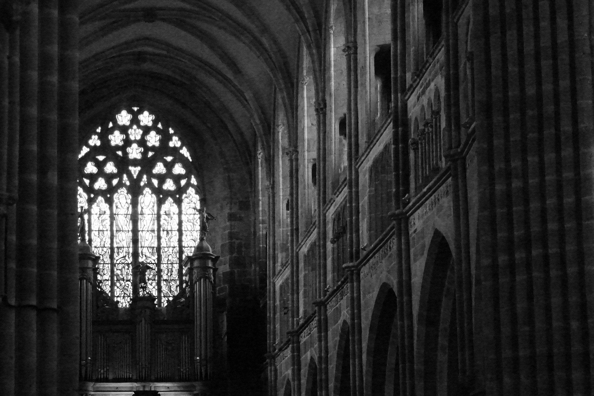 Cathédrale Saint Tugdual 2