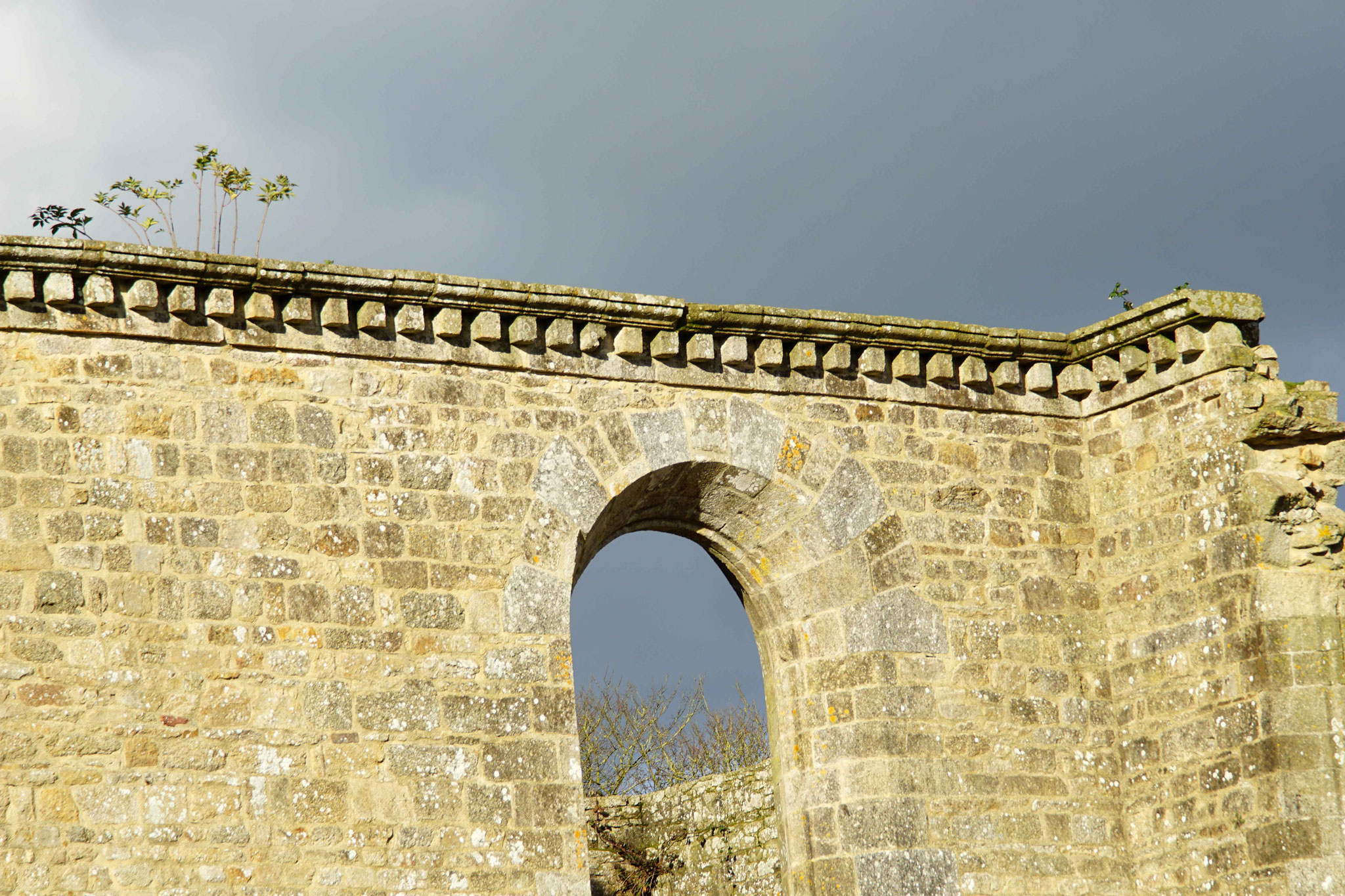 Abbaye de Kerpert, DSC02475