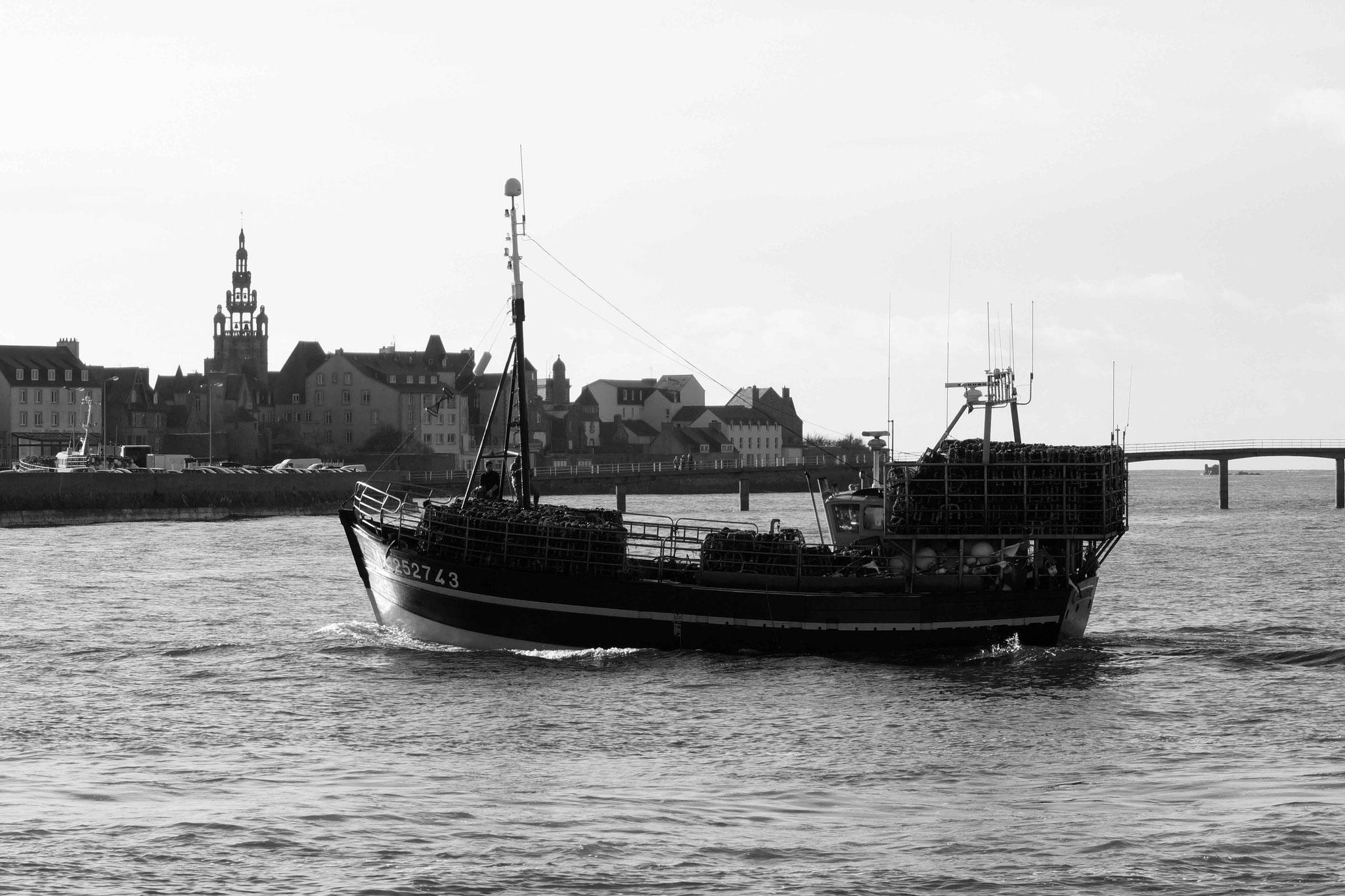 Retour de pêche à Roscoff