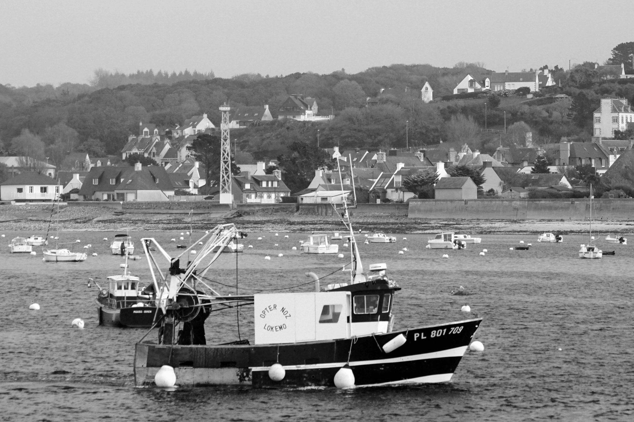retour de pêche au Port de Locquémeau