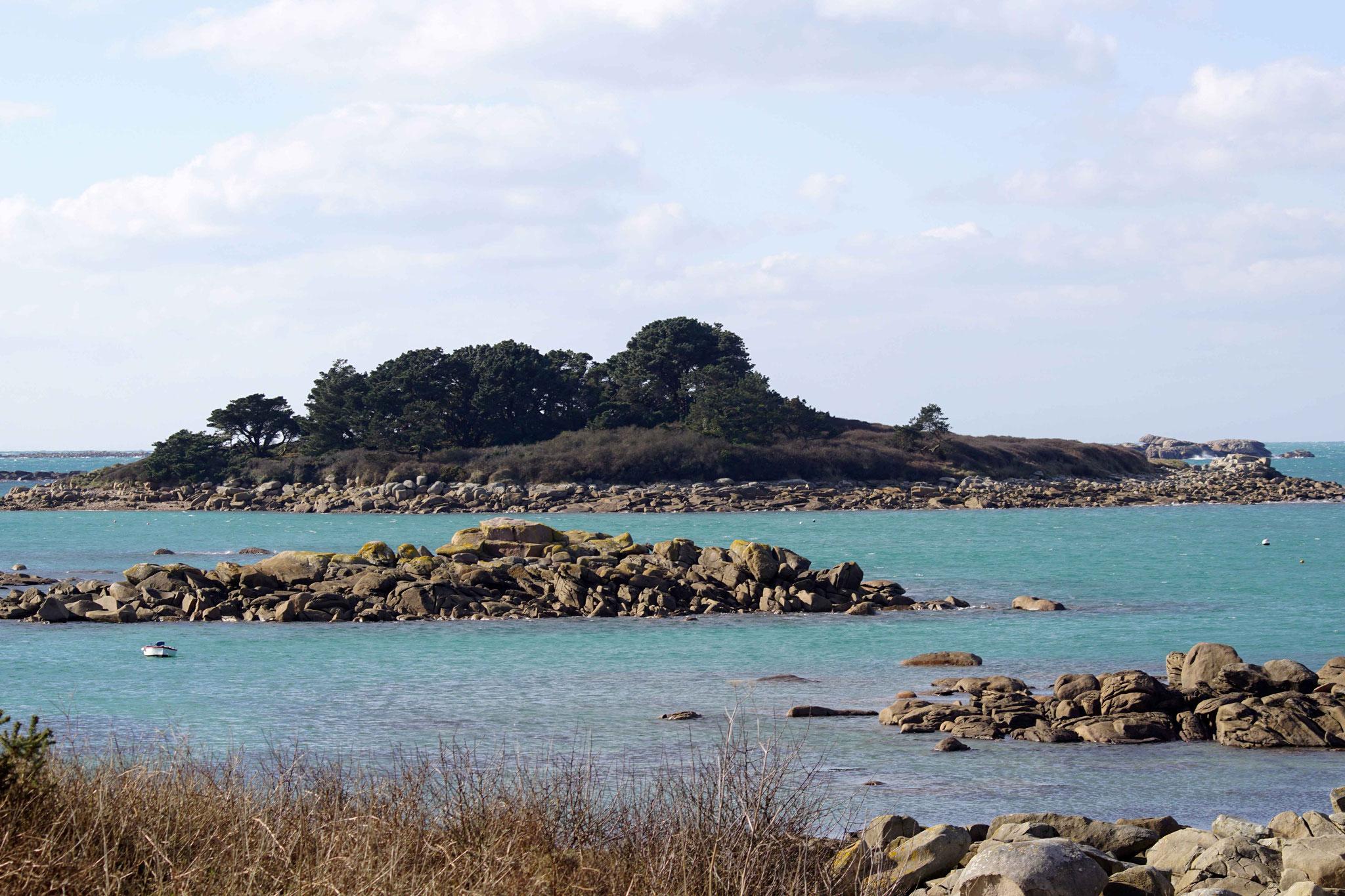 Île Aux Lapins Trégastel, DSC07886