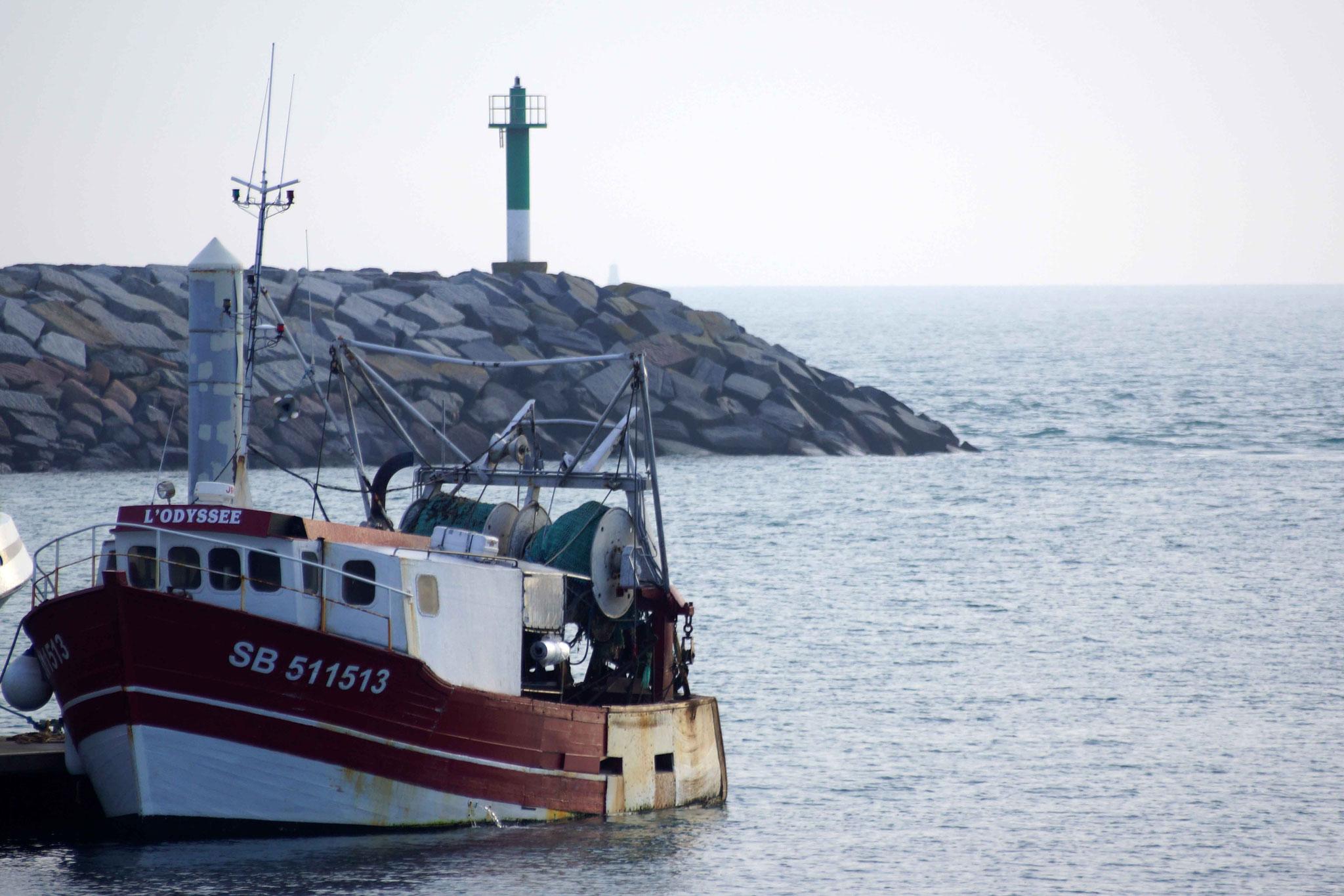 Port de Saint Quay Portrieux DSC00009