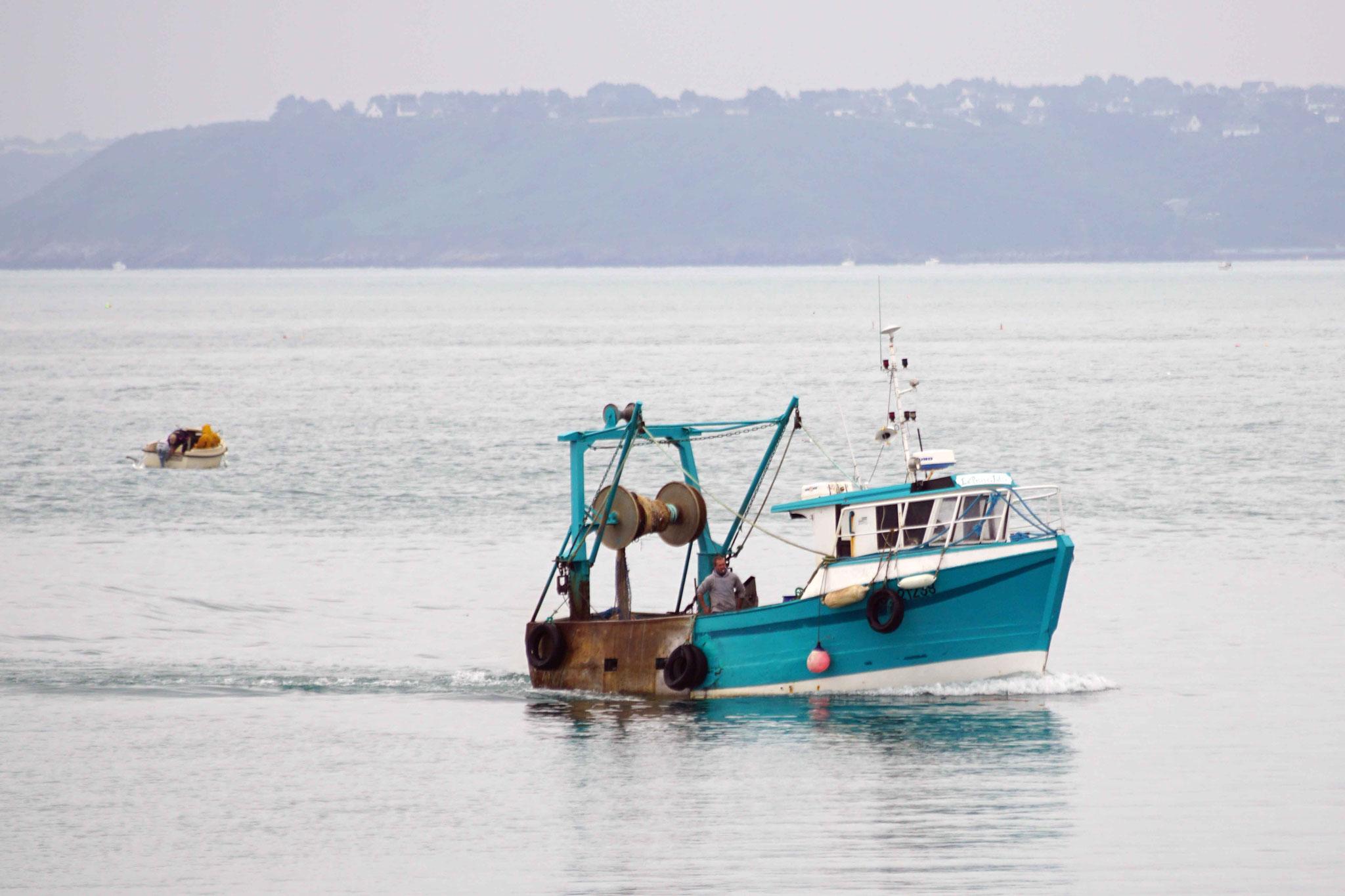 La Petite Julie rentre au port de Saint Quay Portrieux, DSC07446