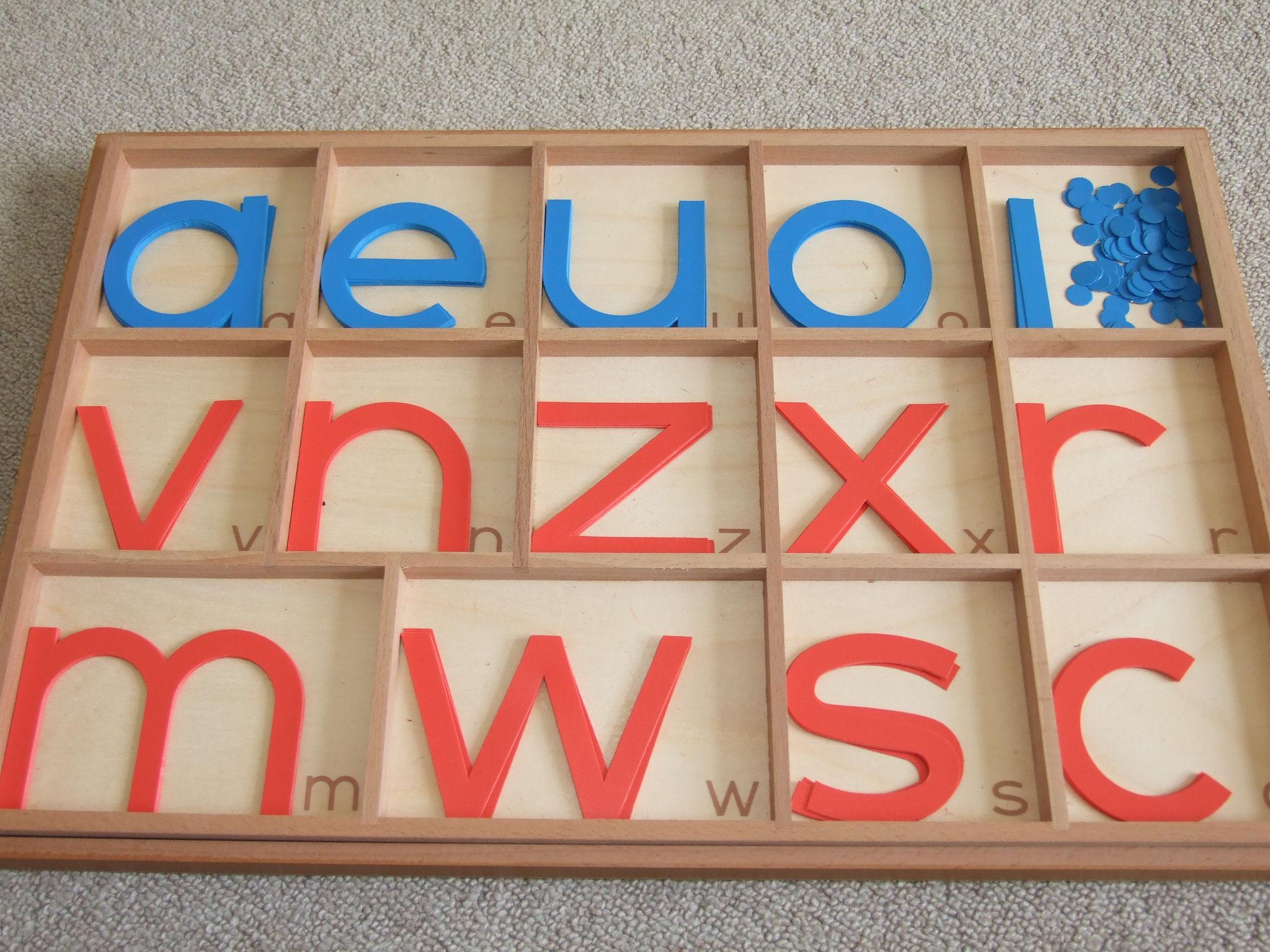 Großer Kasten mit Beweglichem Alphabet, nur Kleinbuchstaben, in Druckschrift