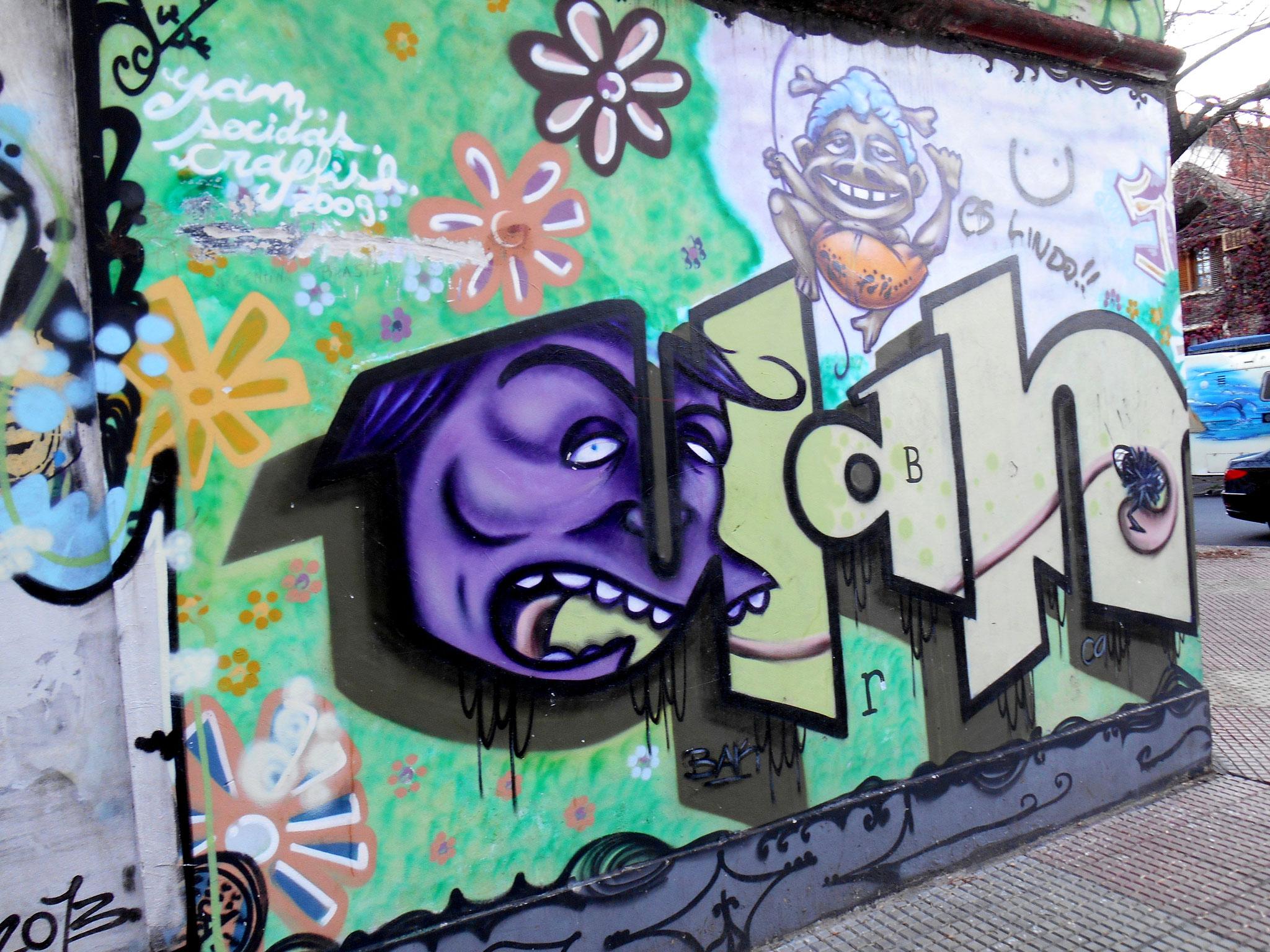 Street Art in Buenos Aires ©JuliaSchlögl