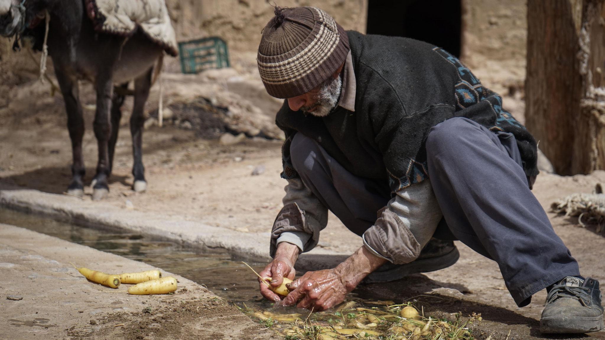 Ein Bauer wäscht Karotten, die er in Kharanaq anbaut, Iran