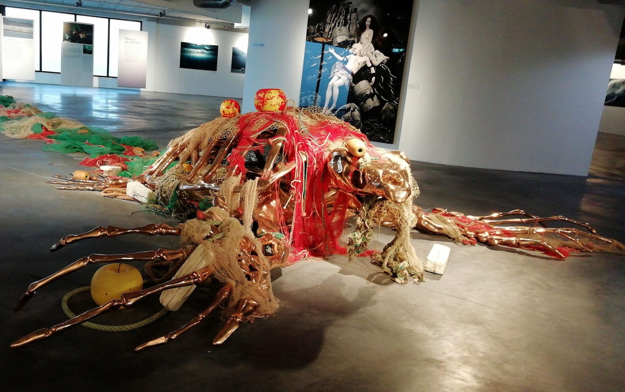 La mort de cette tortue géante évoque la pollution des mers.