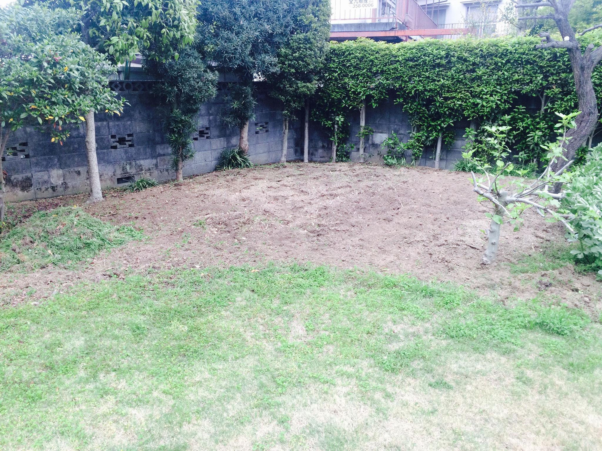 まずは整地。夏野菜を植える準備。