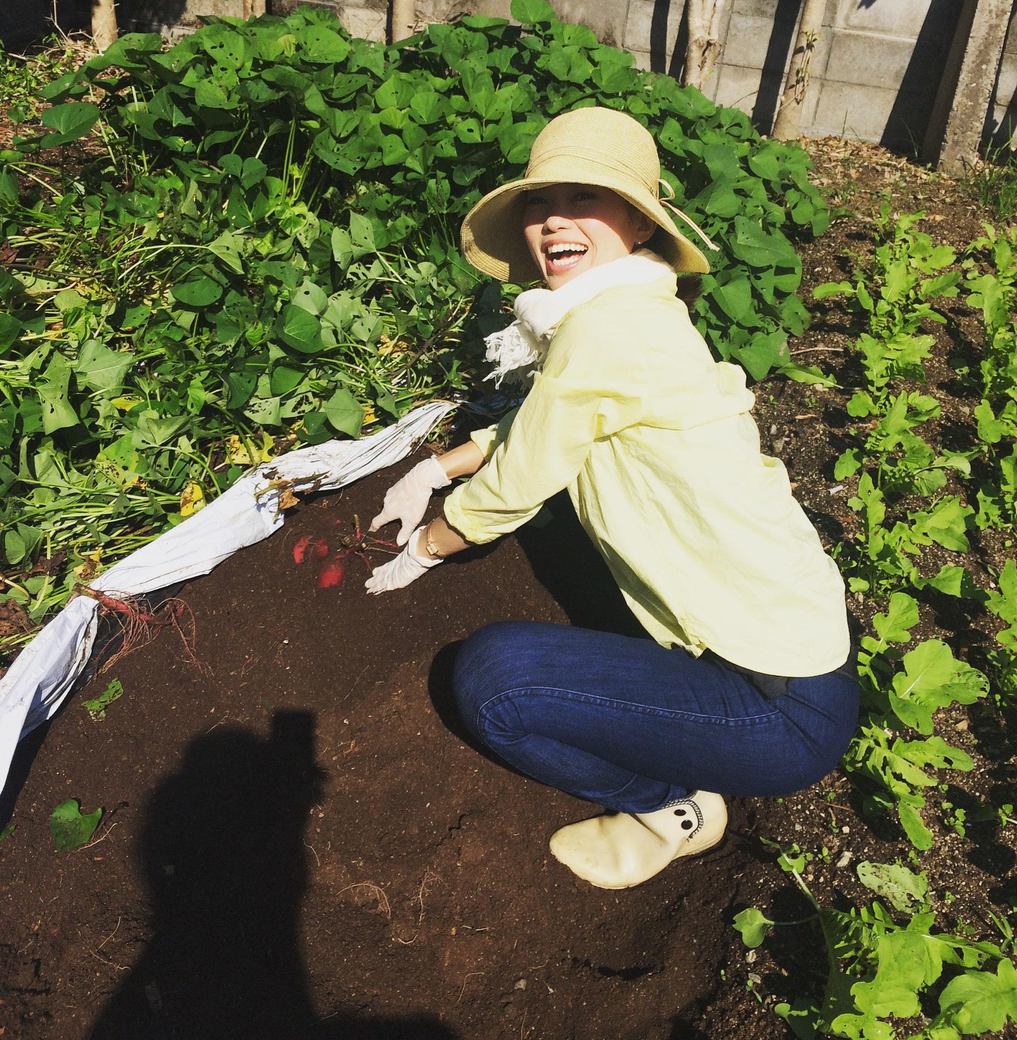 芋の収穫祭!掘る瞬間は忘れられない!