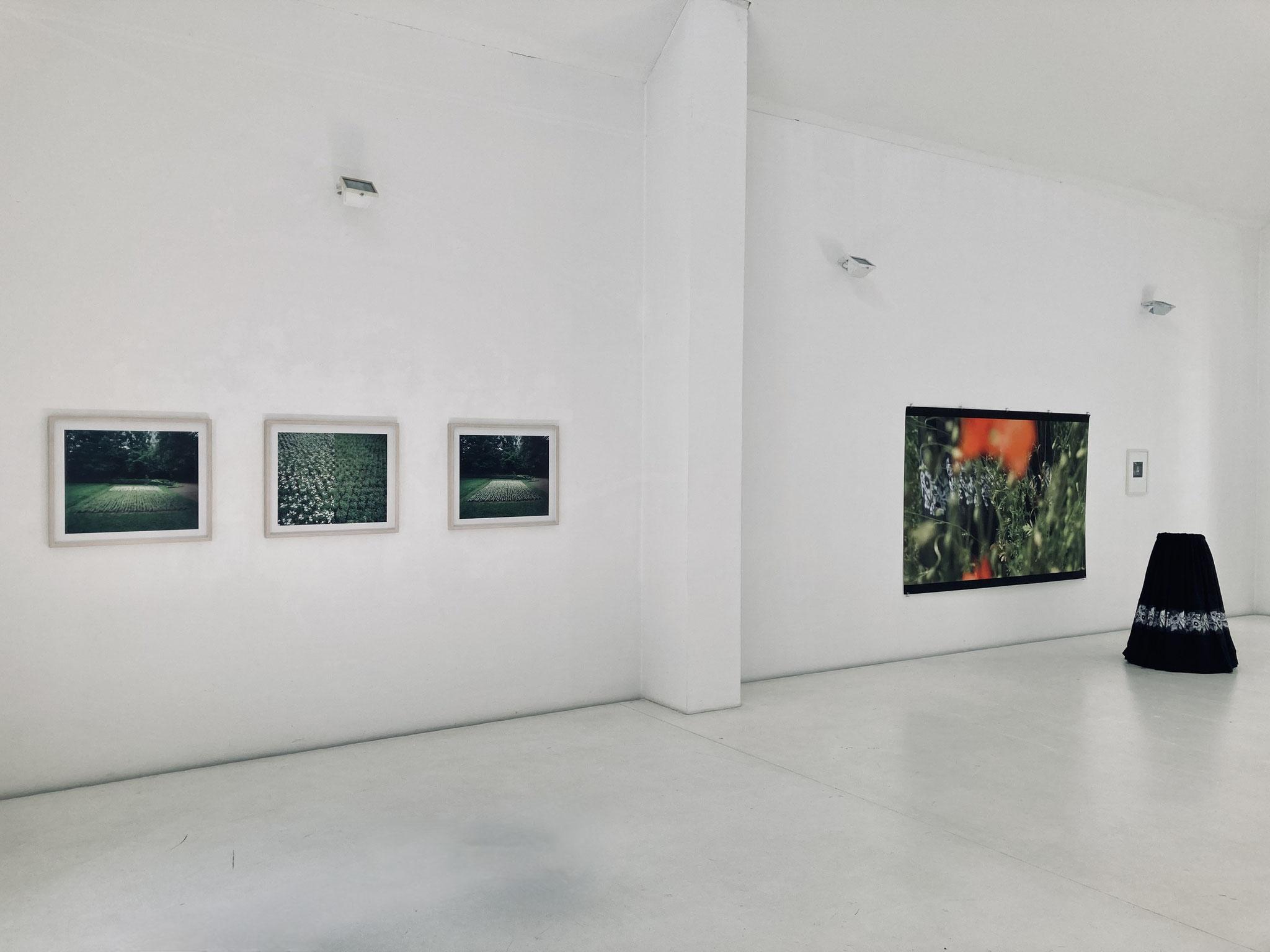 Ursula Neugebauer I still und stand I exhibition view Brigitte March ICA