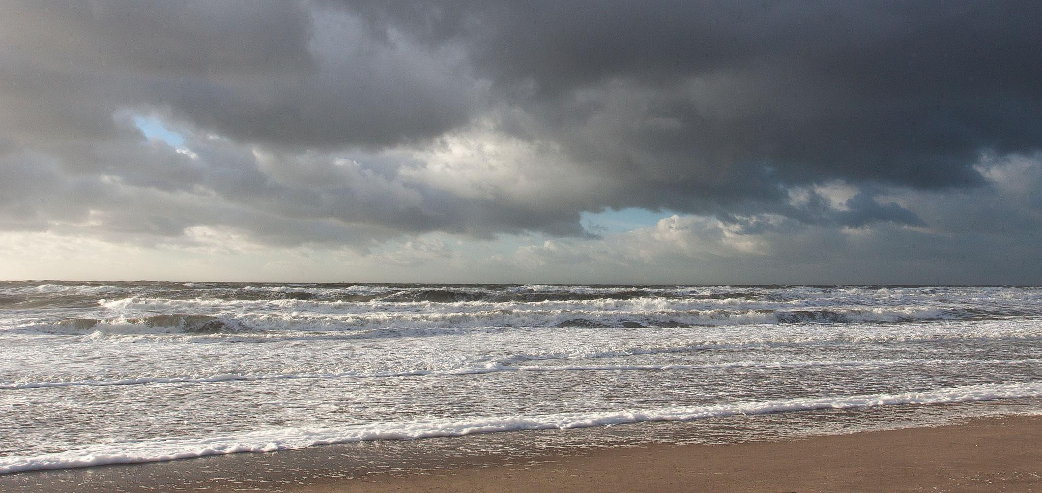 Maasvlakte