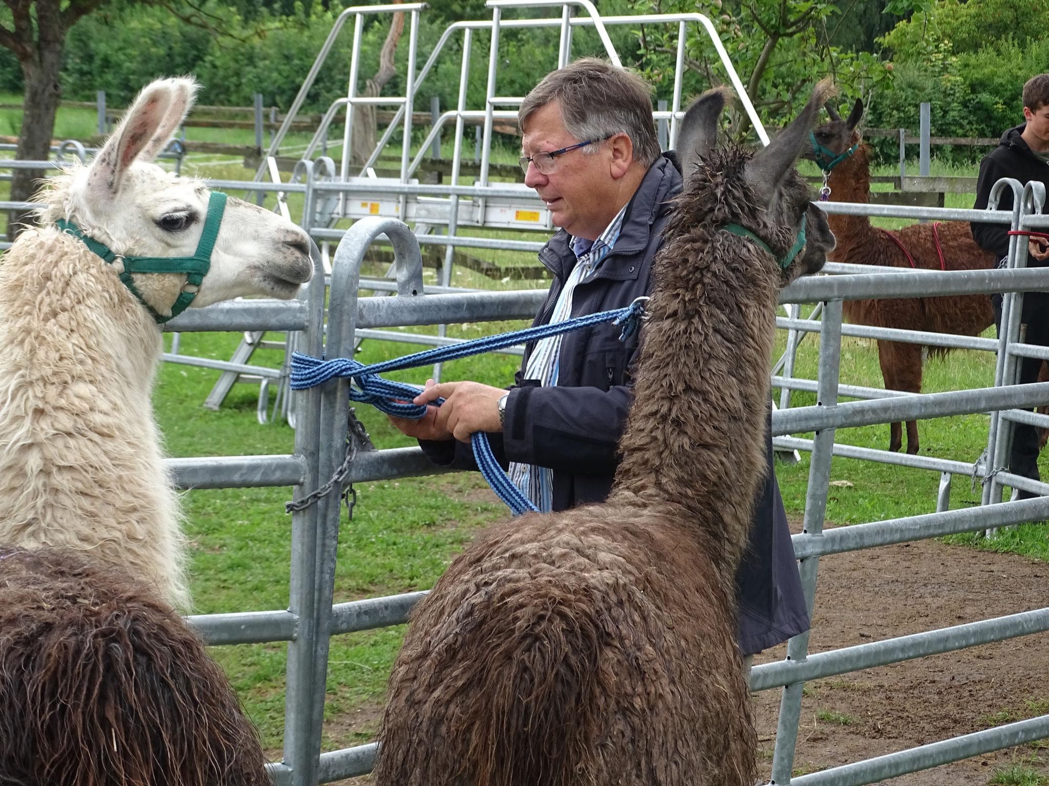 Auch der Vorstand der Lebenshilfe Ebern, Herr Dr. Hans-Werner Steger, ließ sich die Lama-Tour nicht entgehen :)