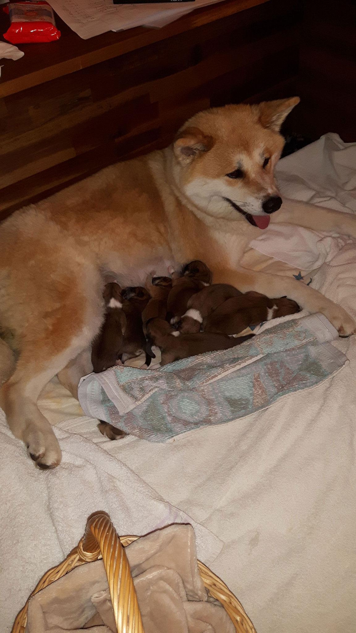 .. und eine glückliche Mama