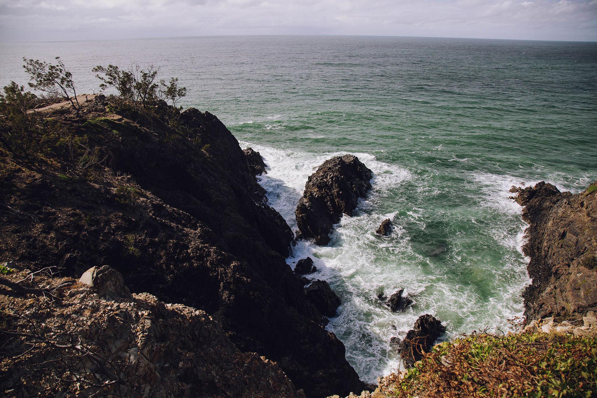 Coastal Walk - Noosa
