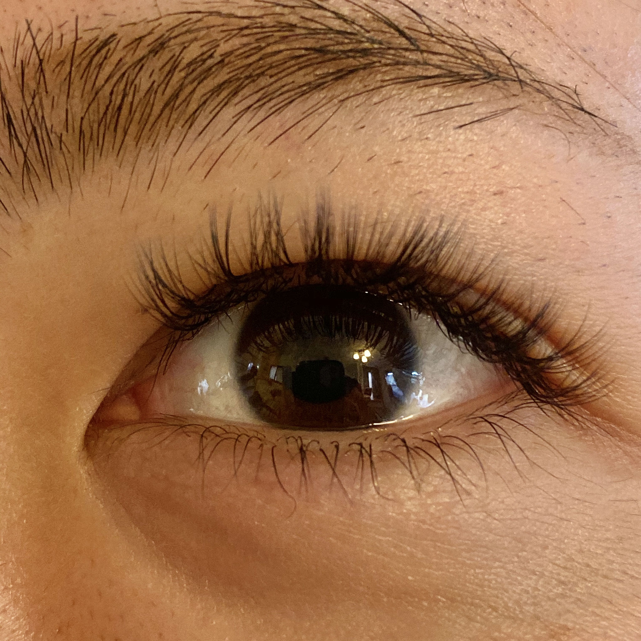 eyelash salon PRIMO
