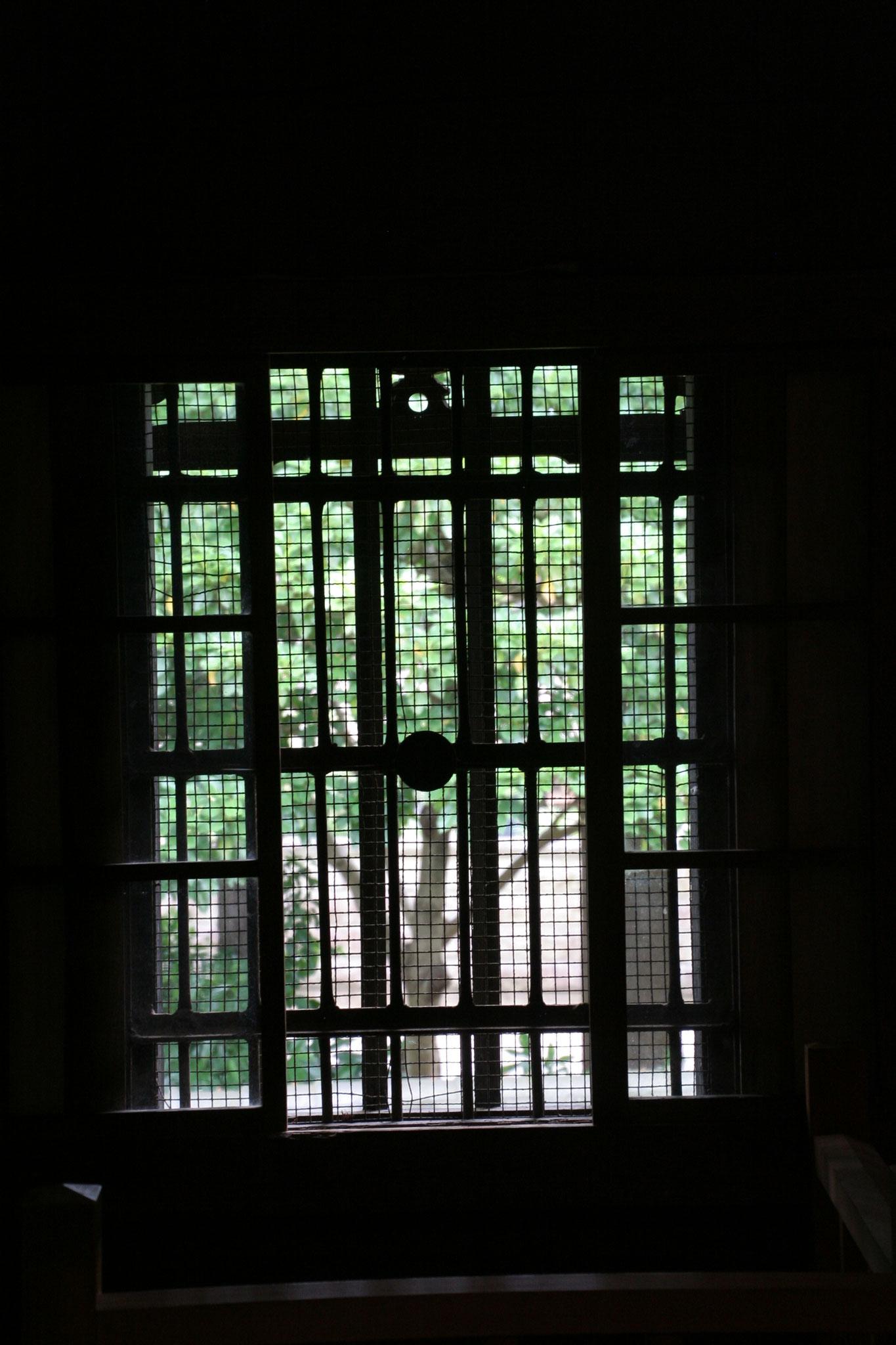 蔵から外の庭を見る。
