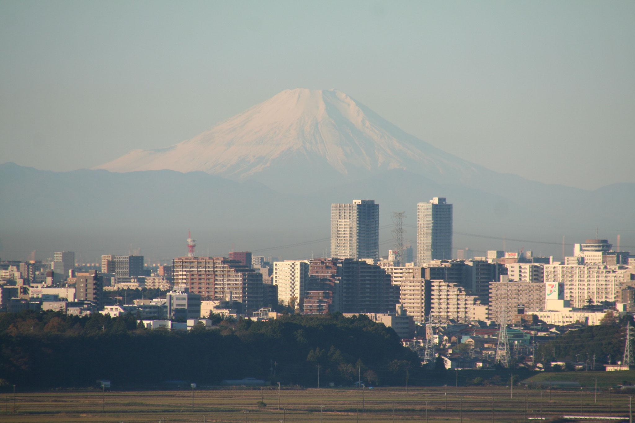 常陸の国から仰ぐ富士