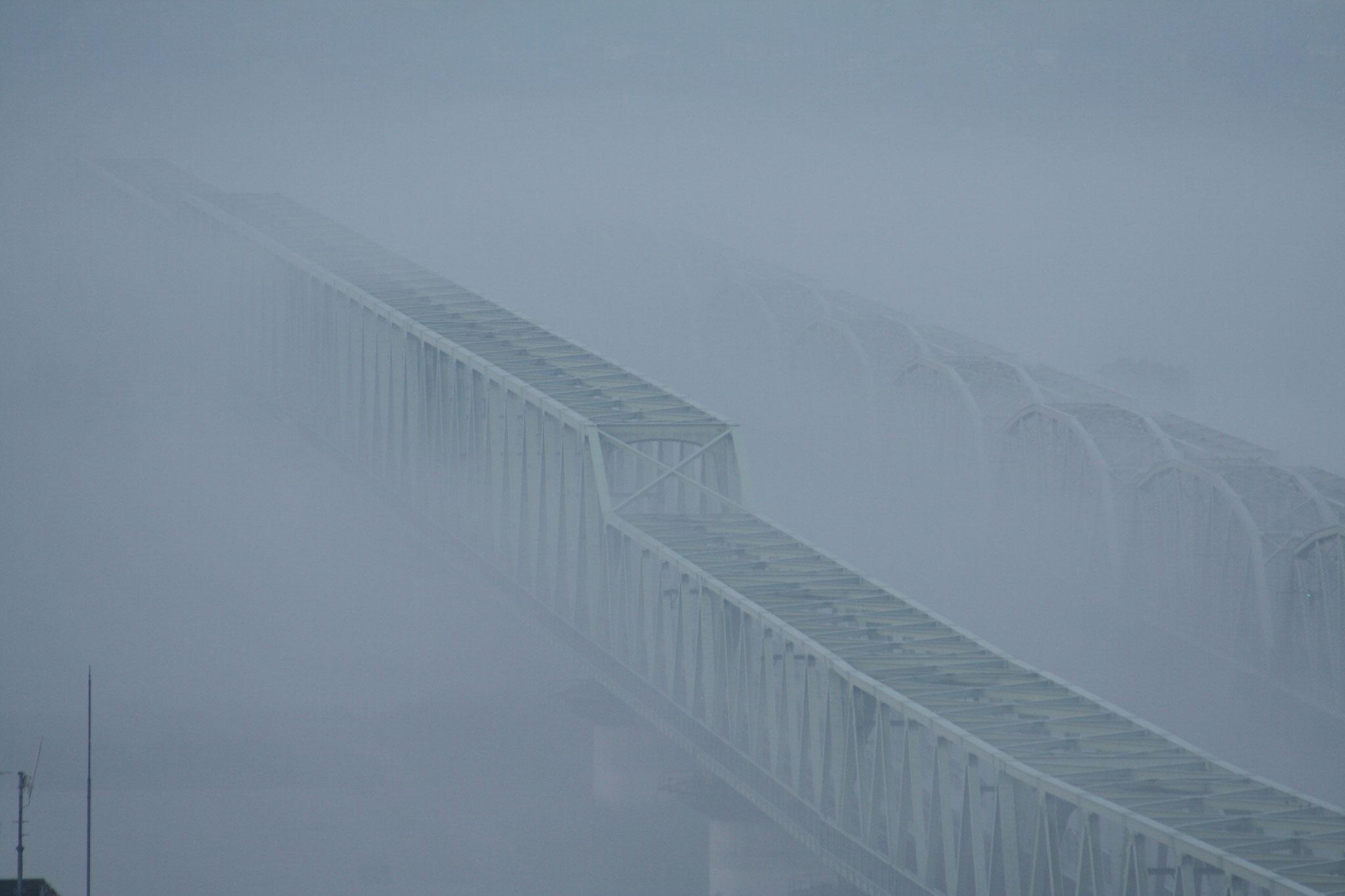 常磐線 霧の利根川鉄橋