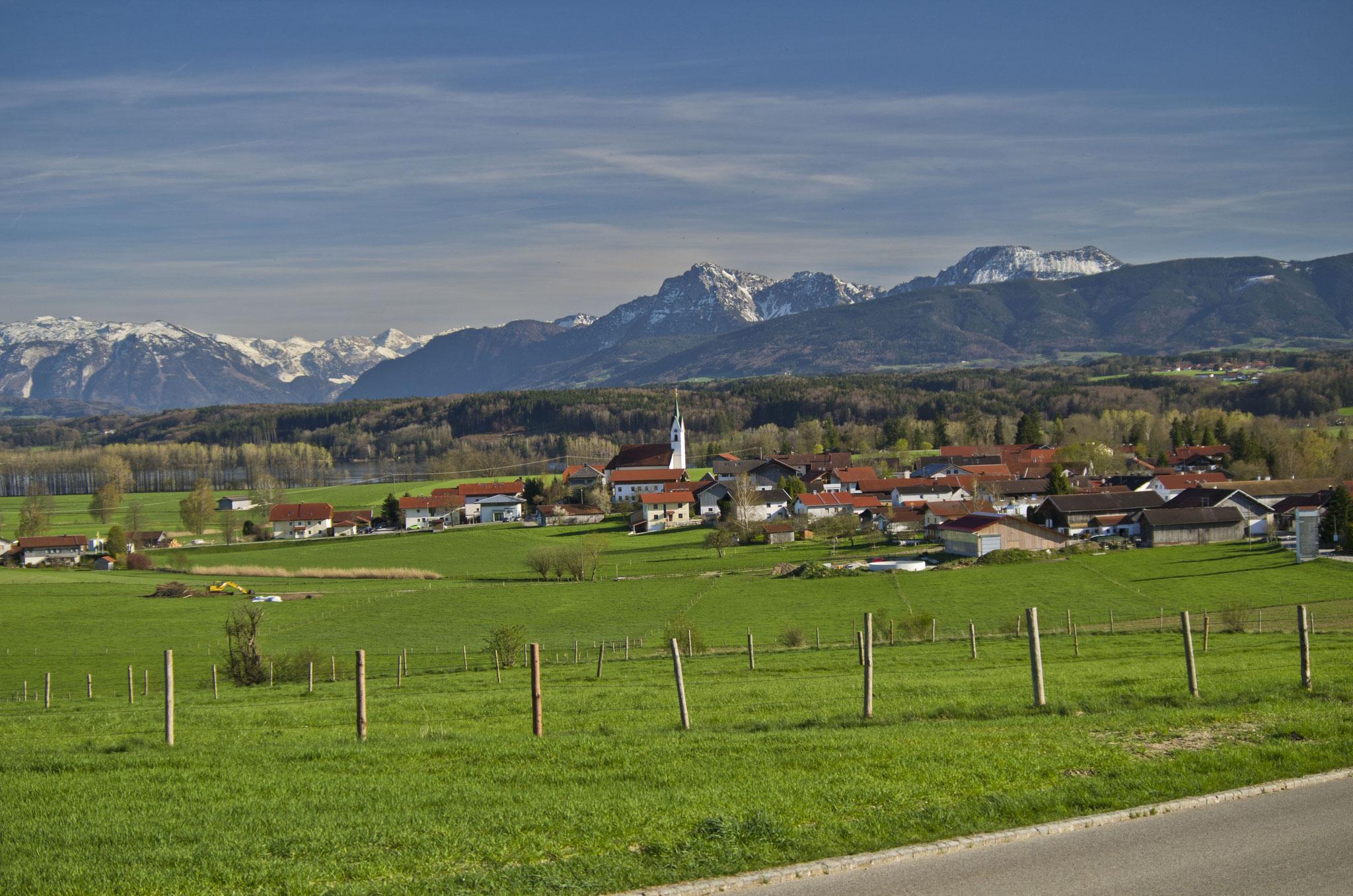 Wanderung mit Hund am Tachinger See im Chiemgau: Blick von Bicheln aus.